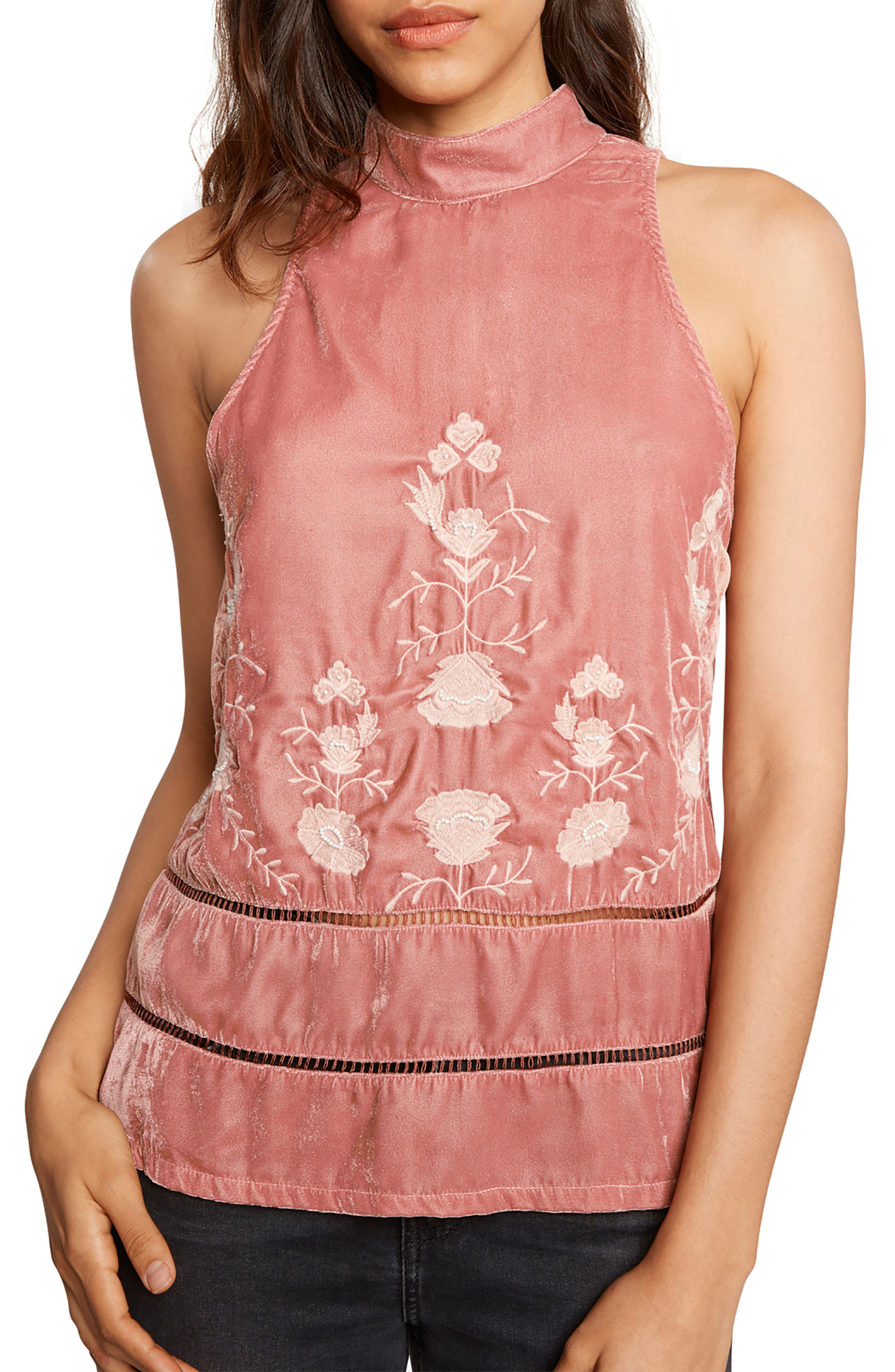 Embroidered Velvet Top,                             Main thumbnail 1, color,                             Rose
