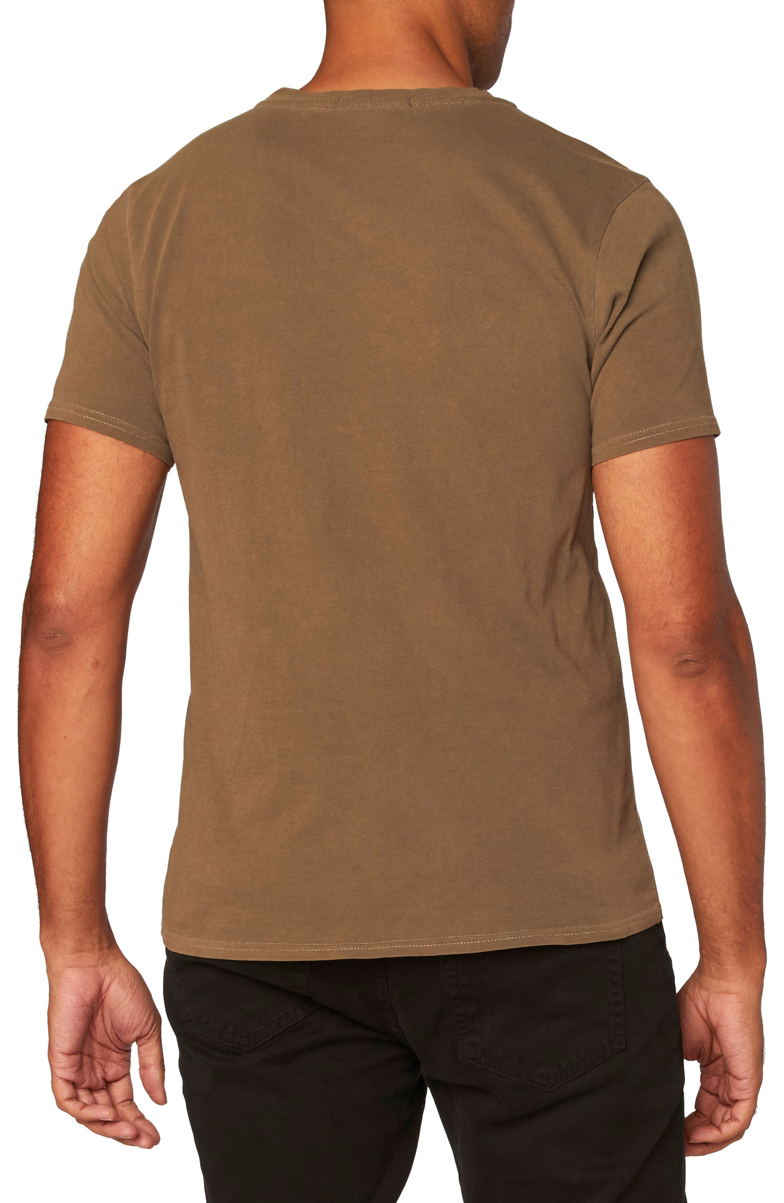 Standard V-Neck T-Shirt,                             Alternate thumbnail 2, color,                             Beech