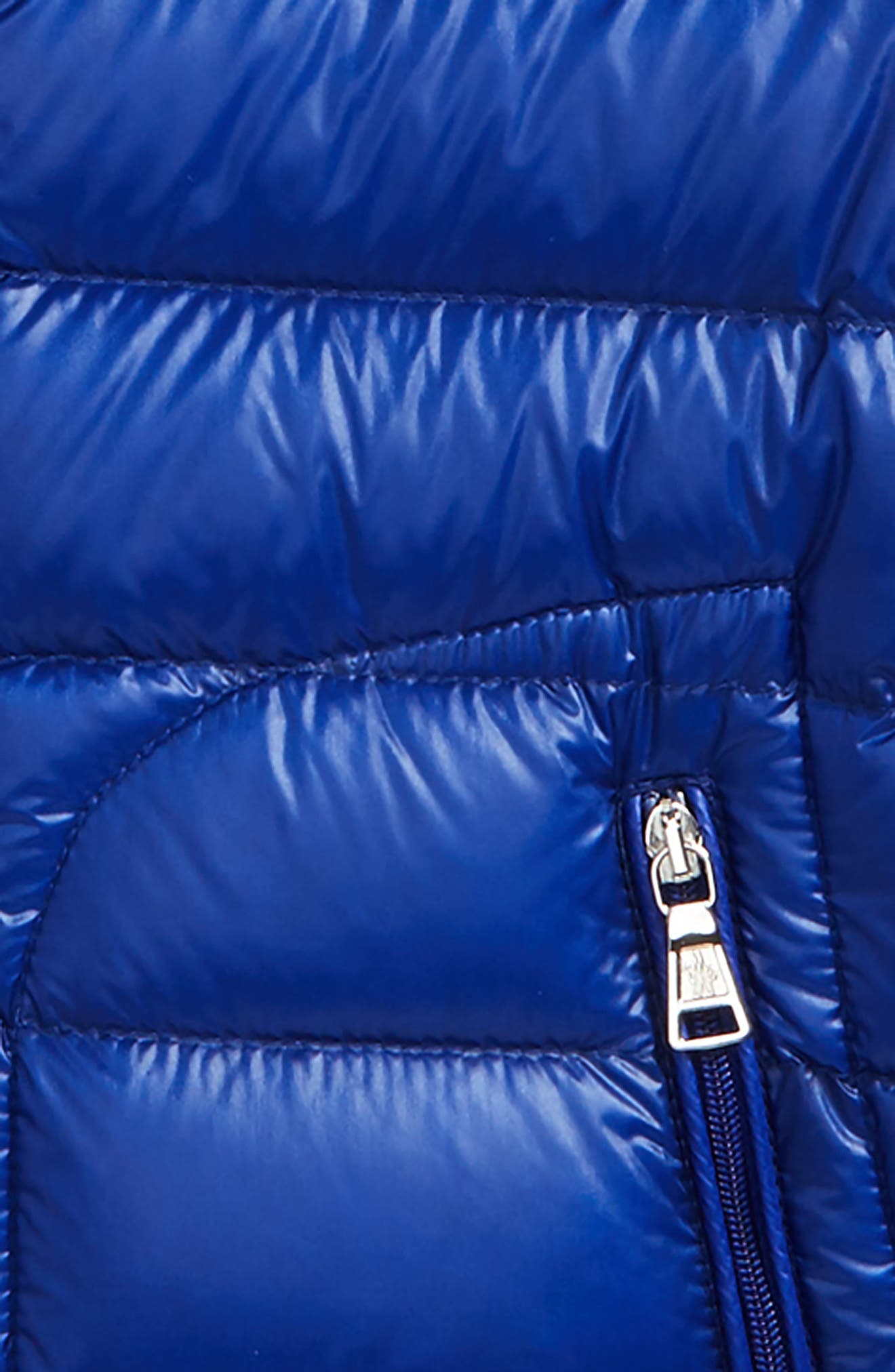 Acorus Goose Down Jacket,                             Alternate thumbnail 2, color,                             Bright Blue