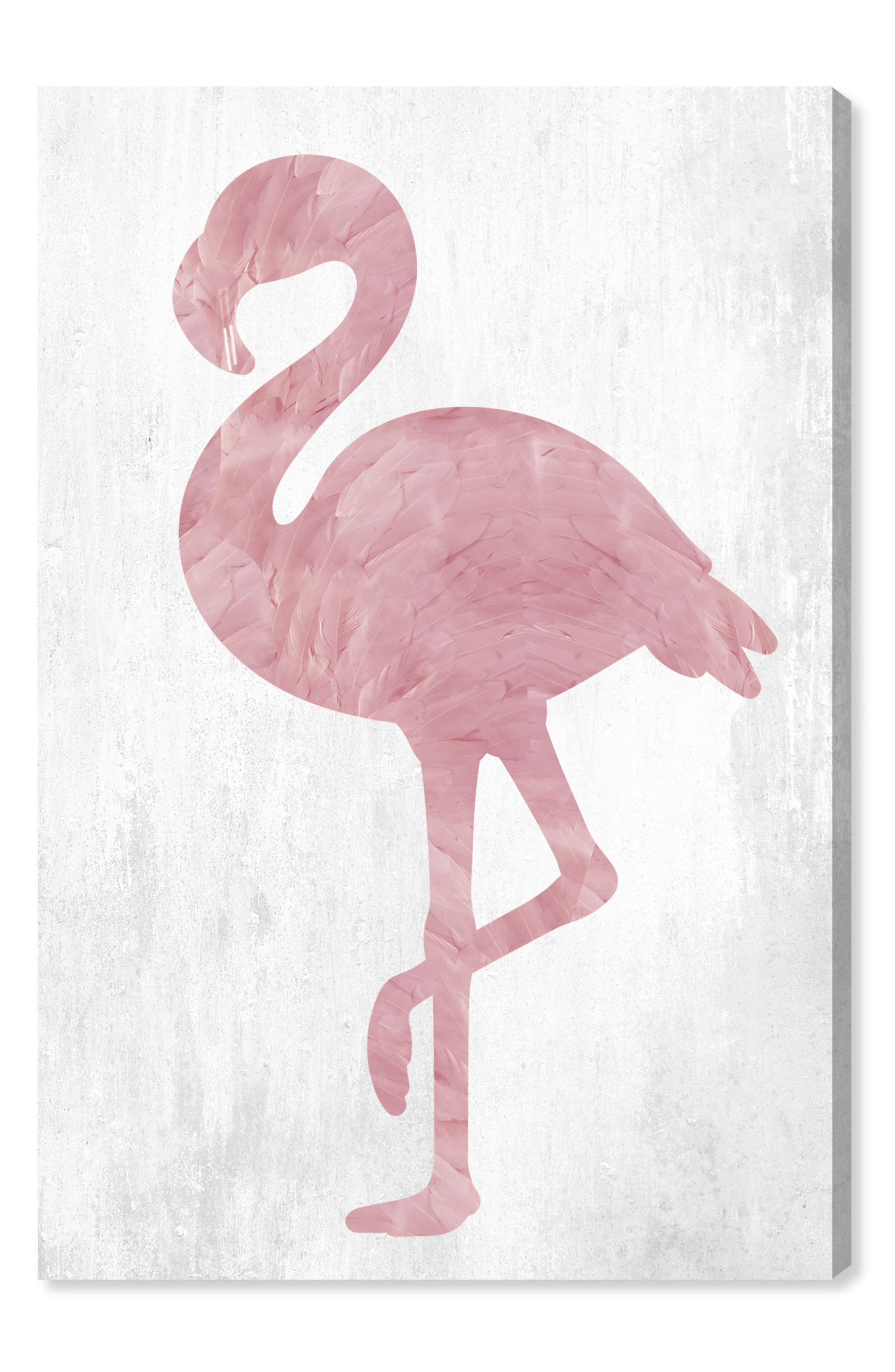 Pink Feathered Flamingo Canvas Wall Art,                         Main,                         color, White