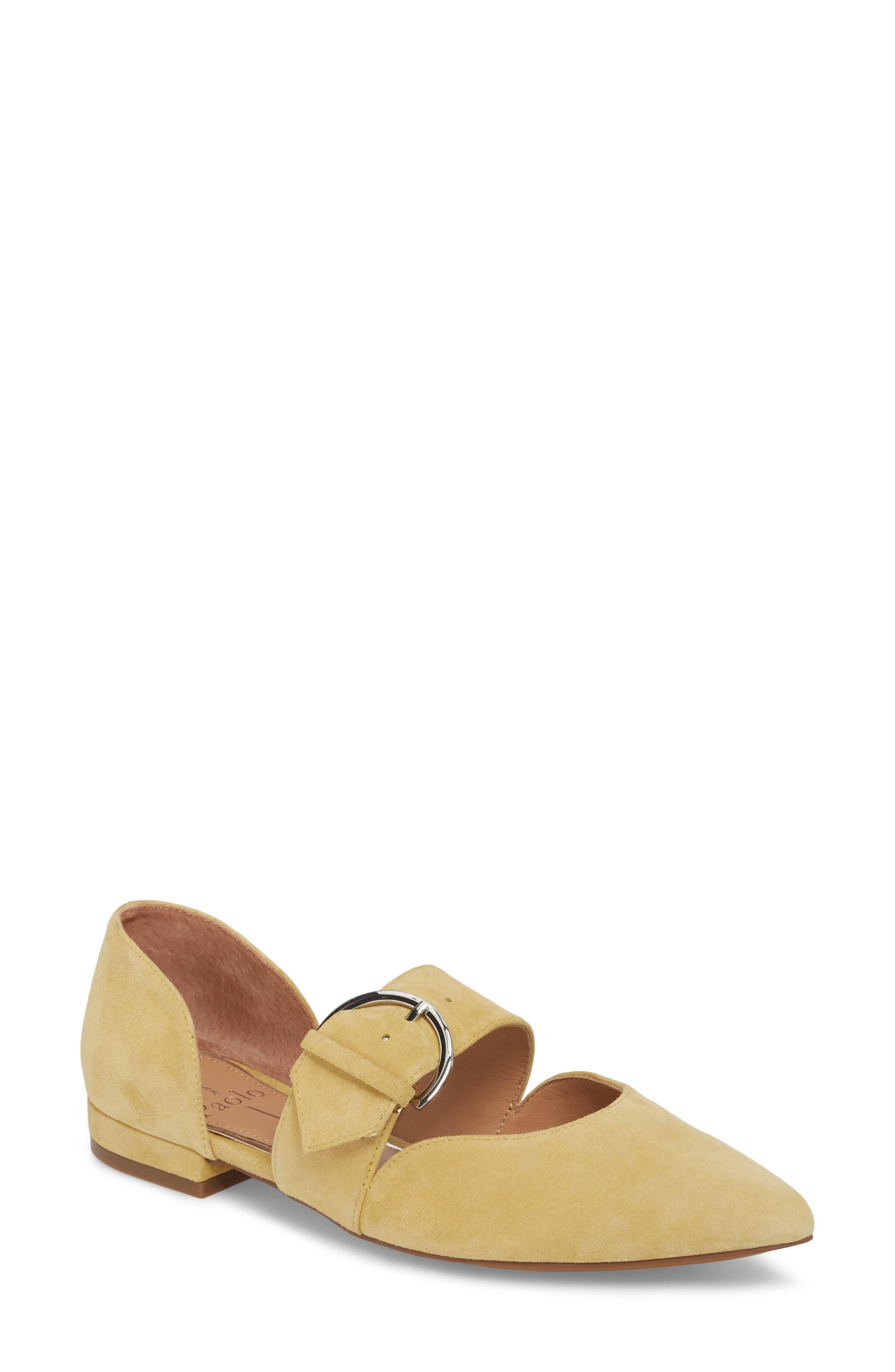 Main Image - Linea Paolo Dean Pointy Toe Flat (Women)