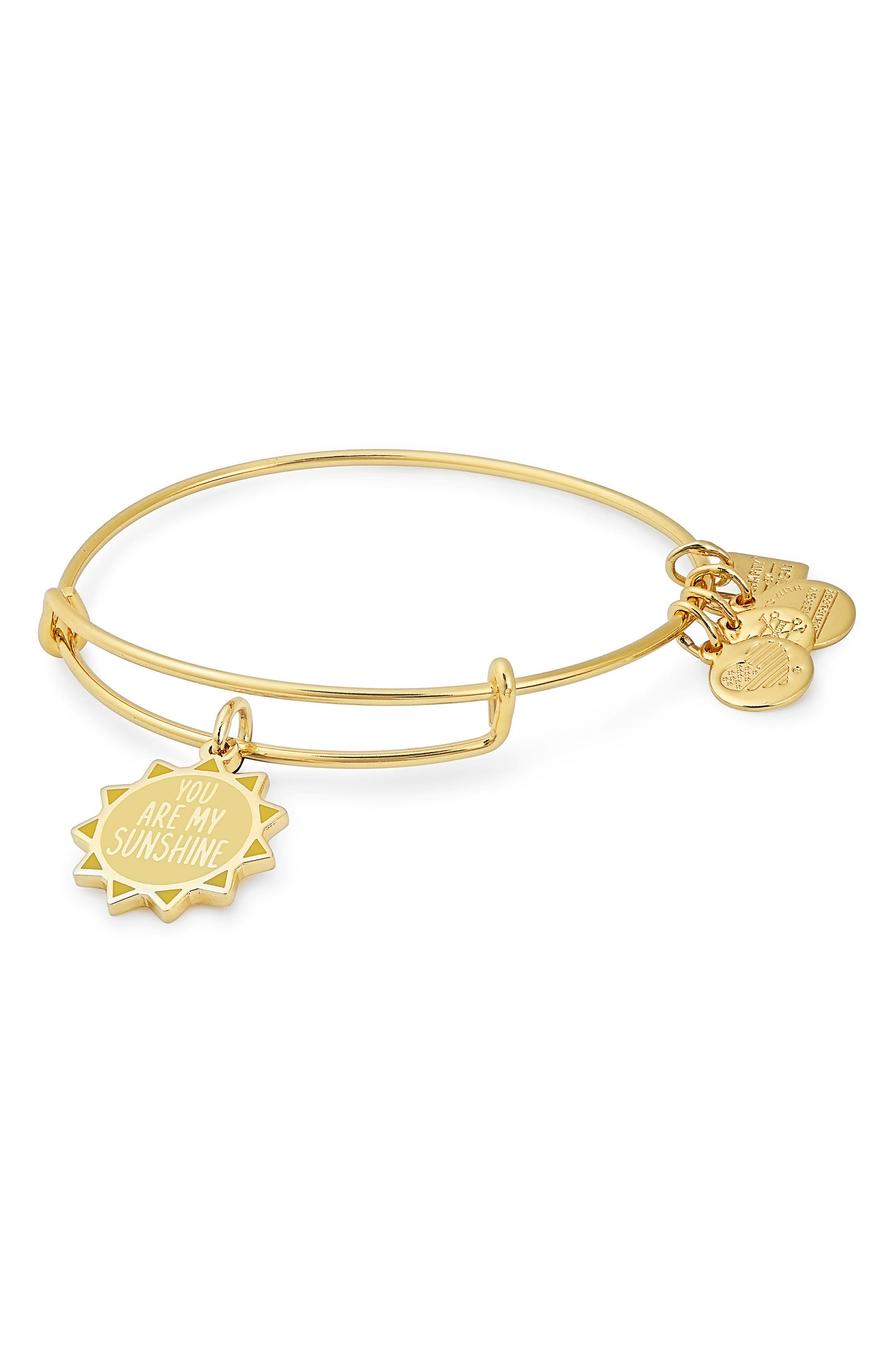 Alternate Image 1 Selected - Alex and Ani Charity by Design You Are My Sunshine Charm Bracelet