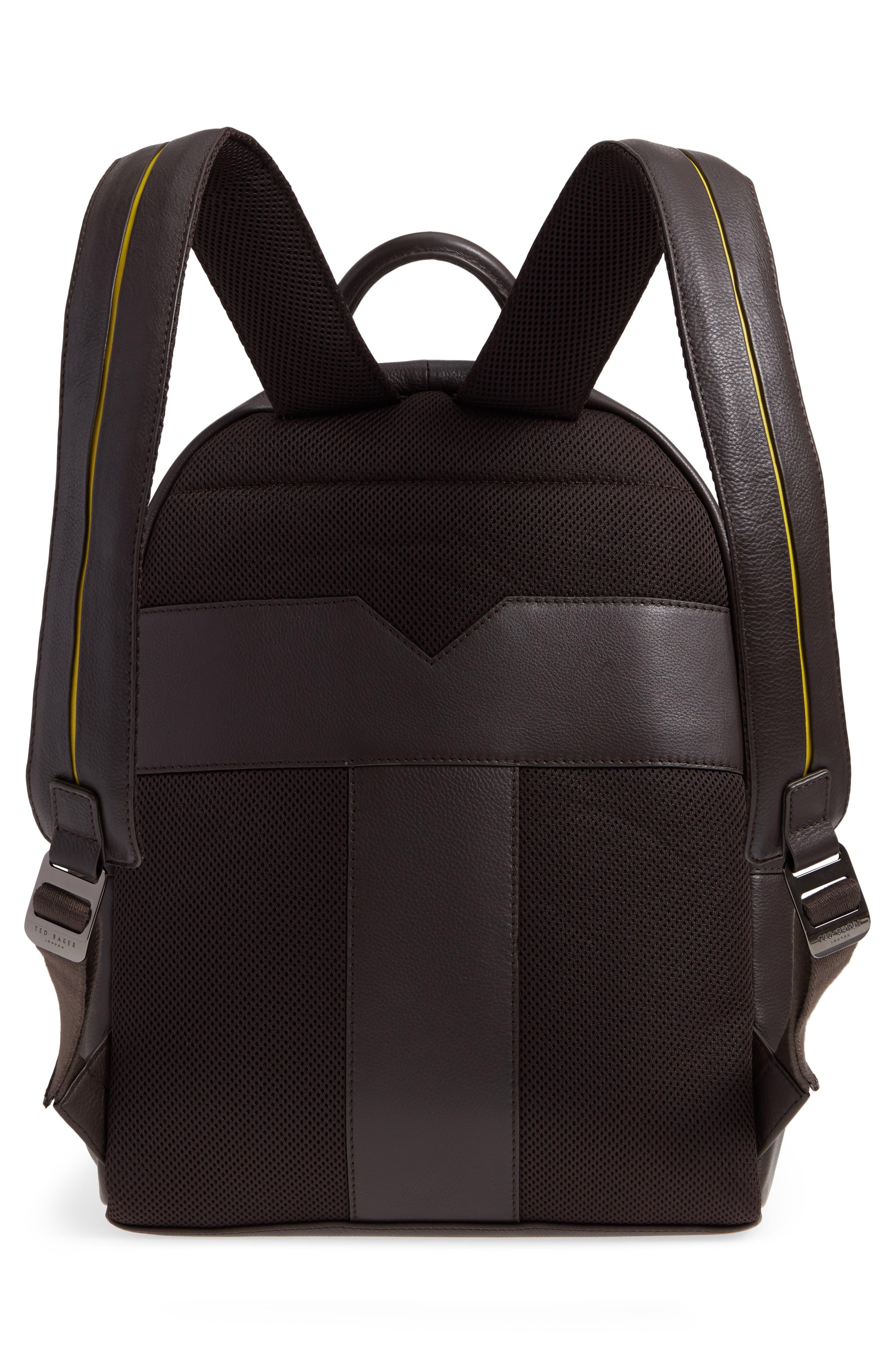 Huntman Stripe Backpack,                             Alternate thumbnail 3, color,                             Chocolate