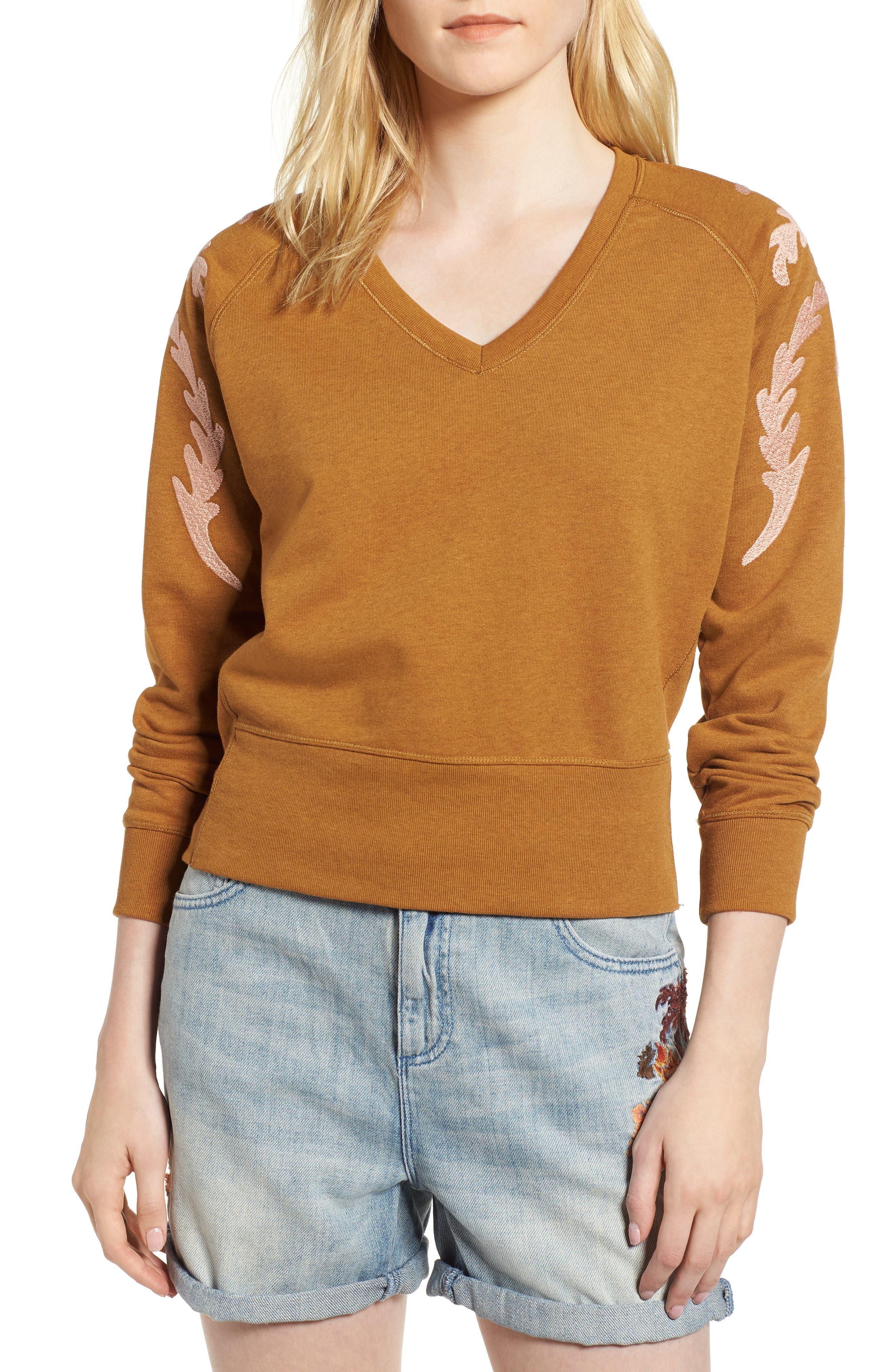 Embroidered V-Neck Sweater,                         Main,                         color, Color 2009 Hazel