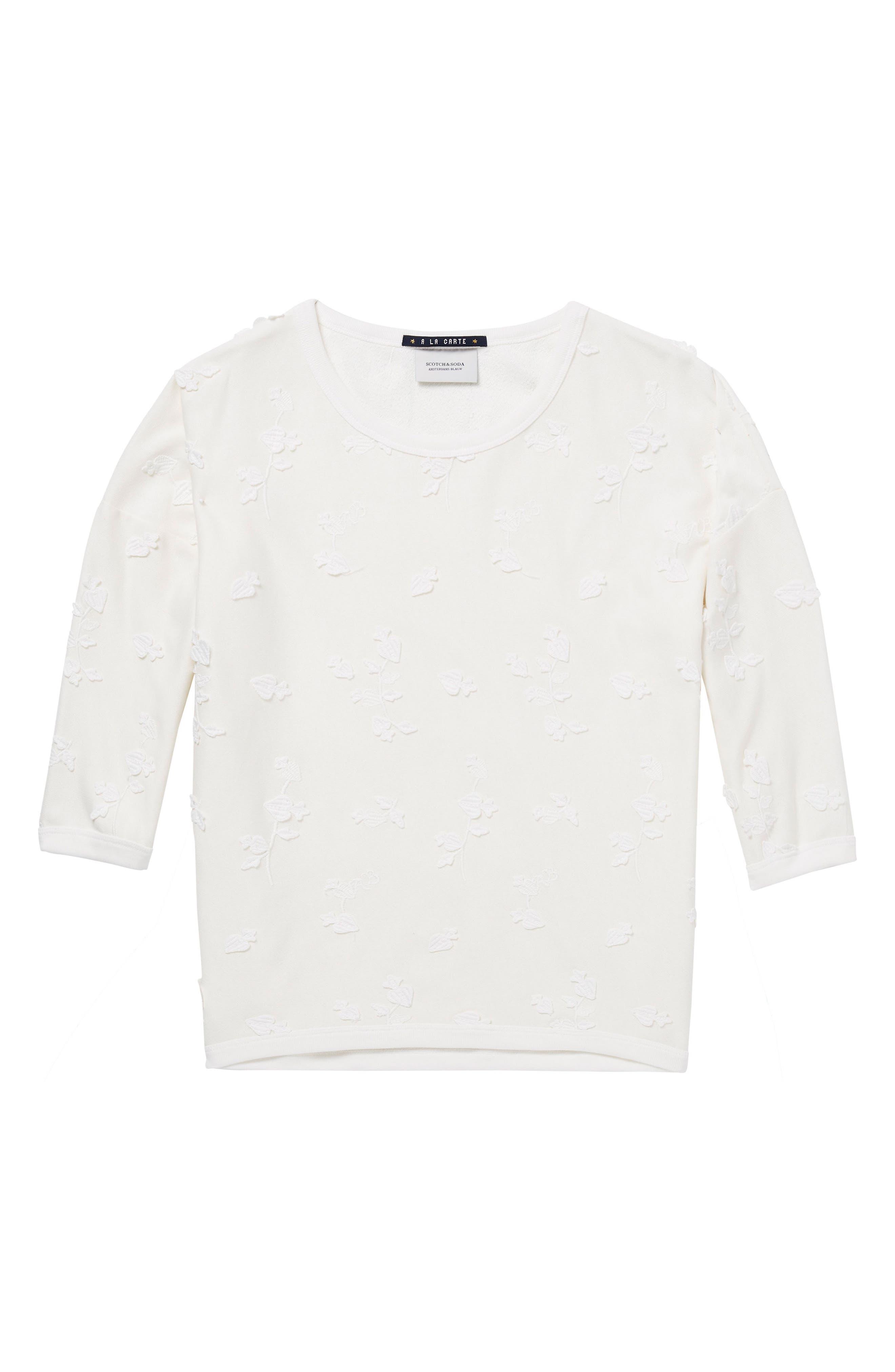 Tonal Embroidered Sweatshirt,                             Alternate thumbnail 6, color,                             01 Denim White