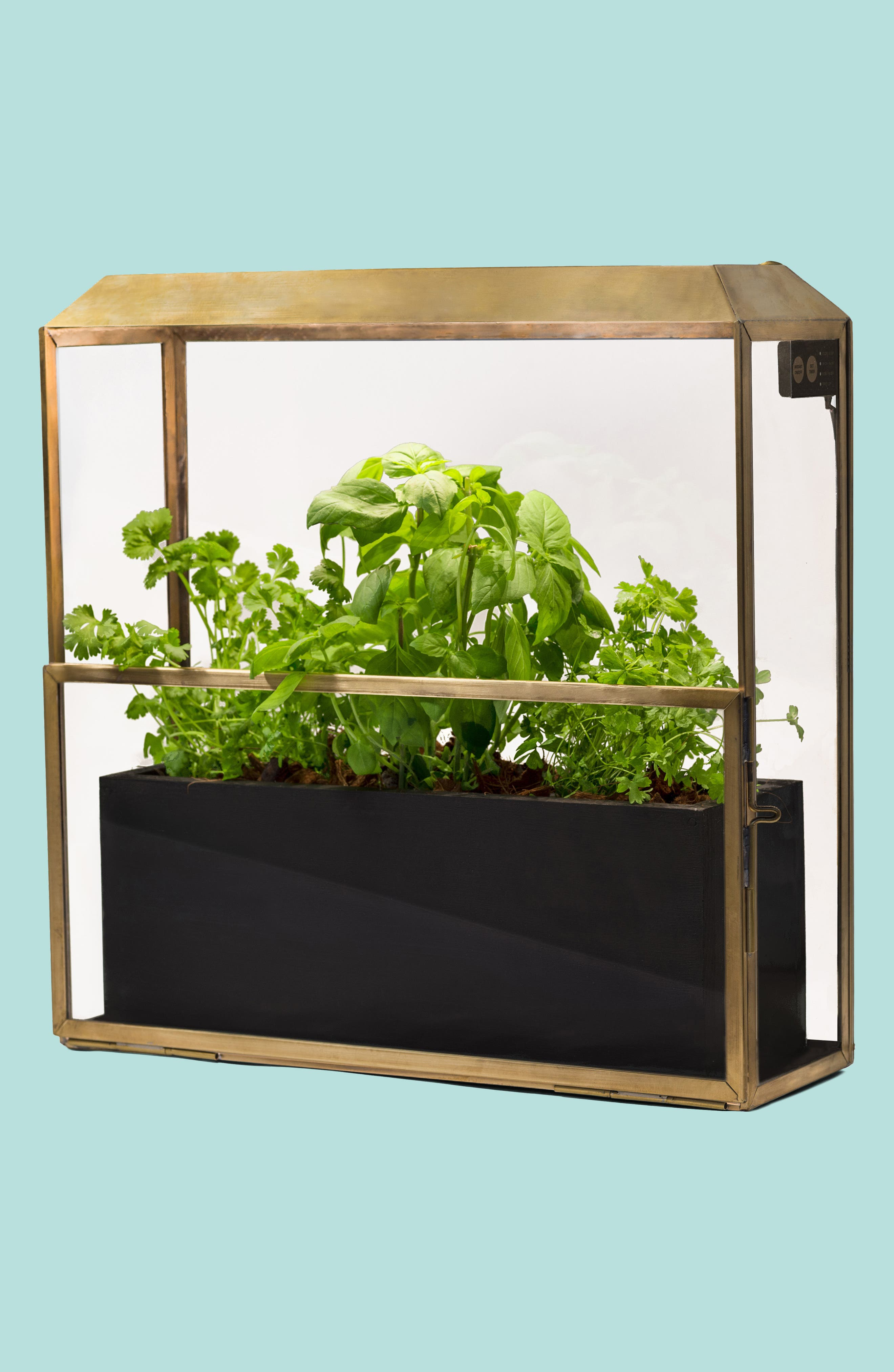 Growhouse Greenhouse & Growlight,                         Main,                         color, Brass N Glass