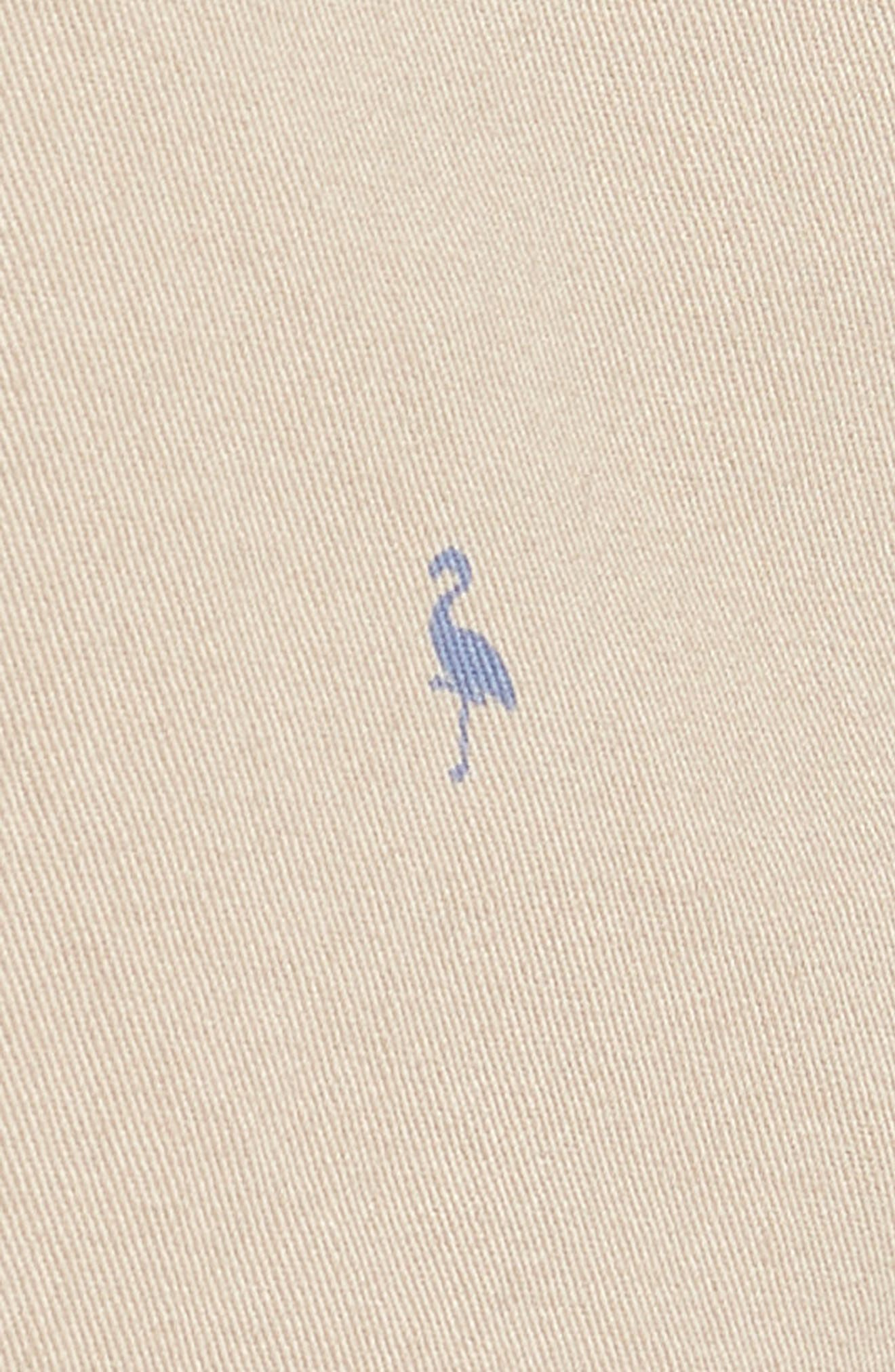 Baden Bird Regular Fit Chino Shorts,                             Alternate thumbnail 5, color,                             Dark Khaki