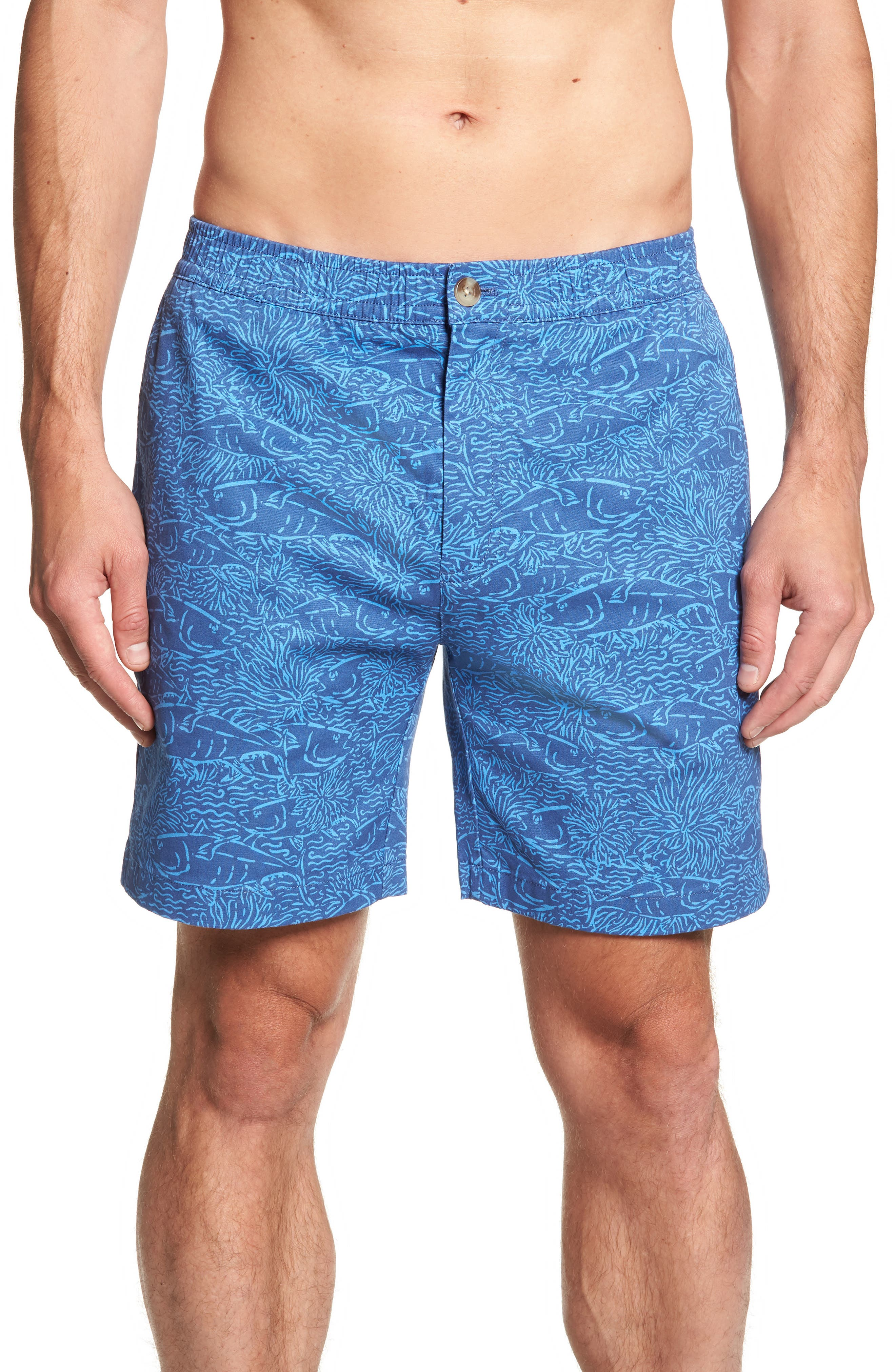 Jetty Print Stretch Cotton Shorts,                             Main thumbnail 1, color,                             Moonshine