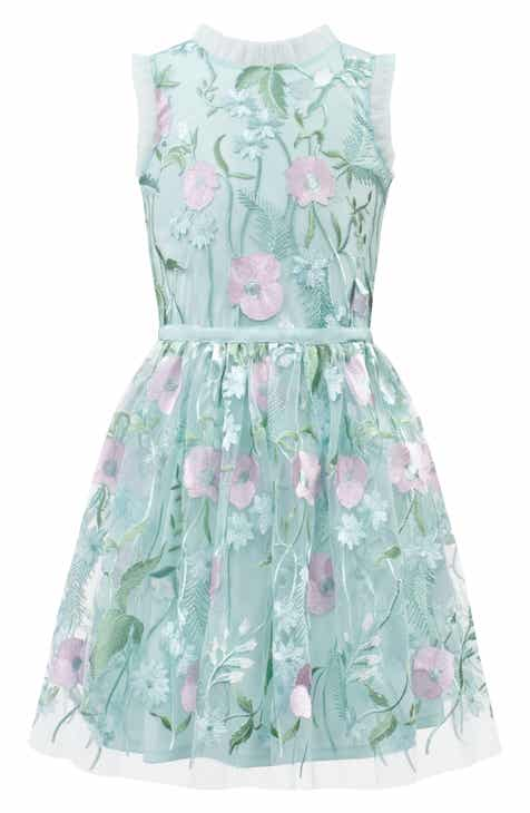 ee022a96e2fe David Charles Pastel Embroidered Tulle Dress (Big Girls)