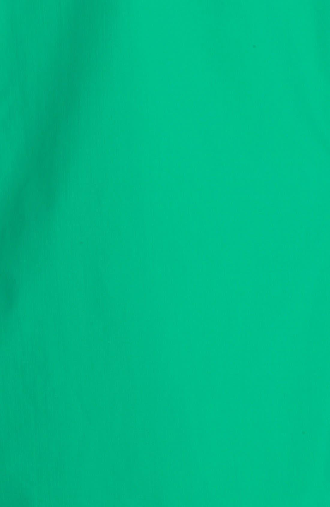 'Beta SL' Waterproof Jacket,                             Alternate thumbnail 6, color,                             Parakeet
