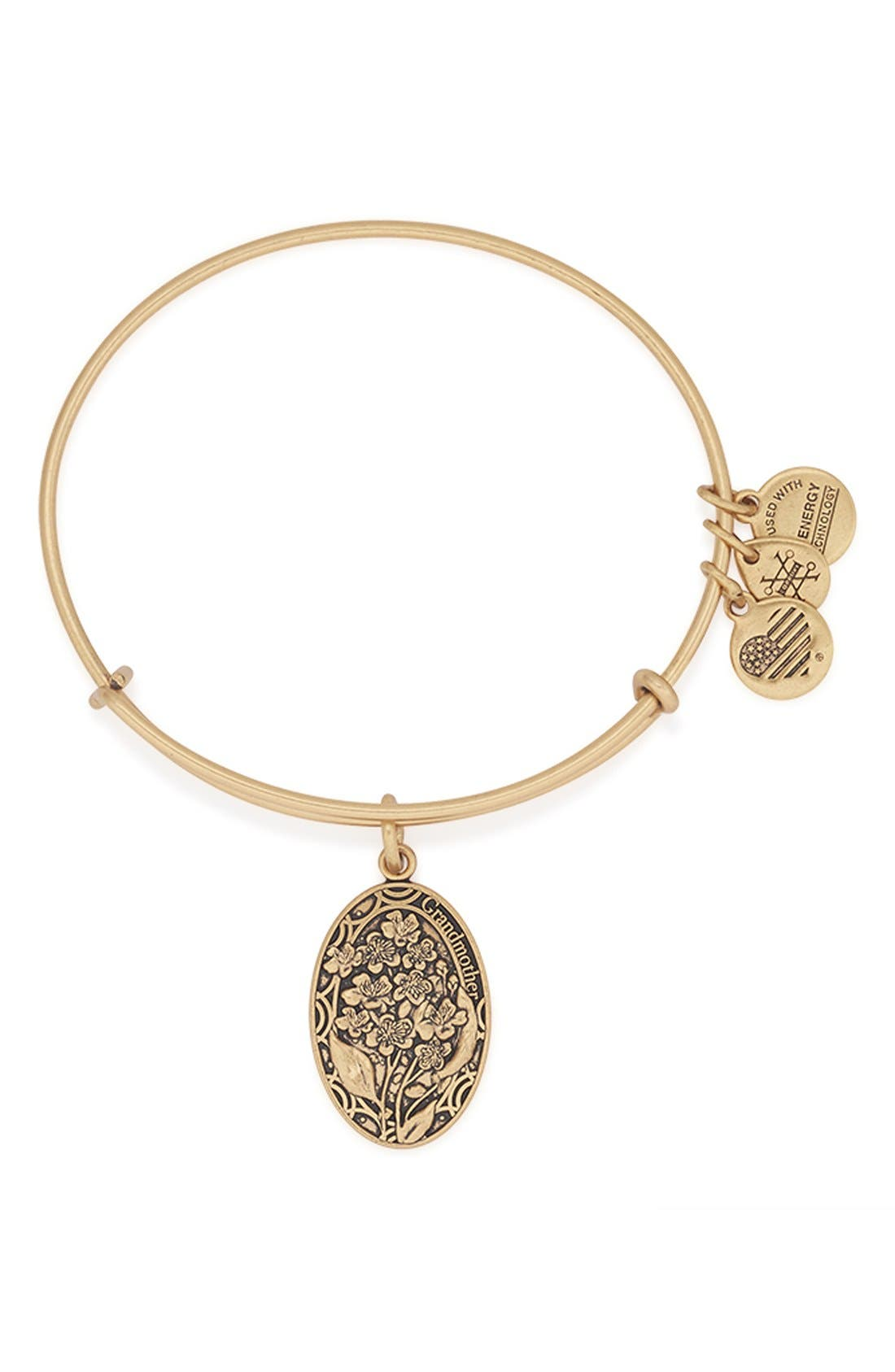Alternate Image 1 Selected - Alex and Ani 'I Love You Grandmother' Expandable Wire Bangle
