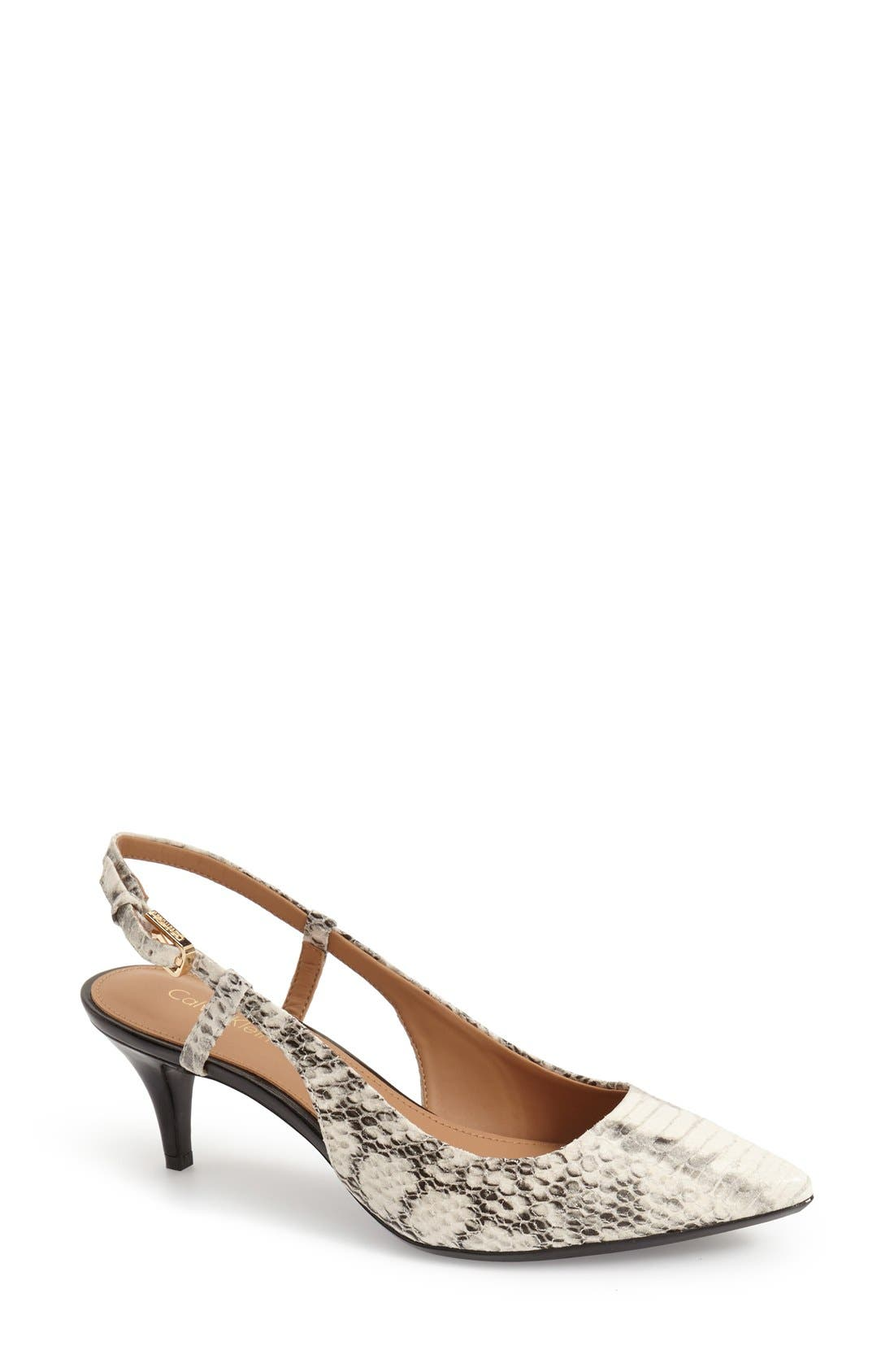 Alternate Image 1 Selected - Calvin Klein 'Patsi' Slingback Pointy Toe Pump (Women)