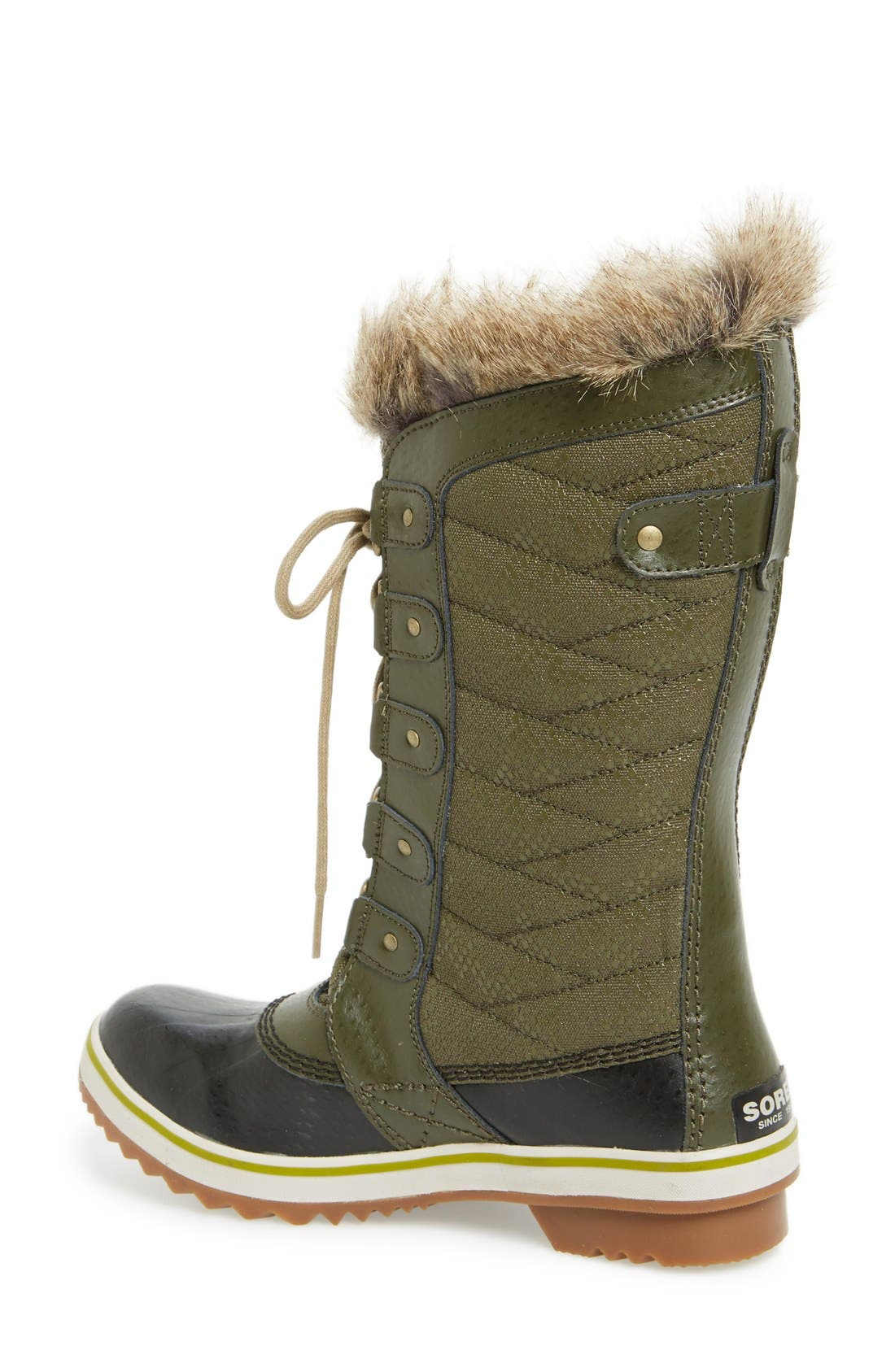 'Tofino II' Faux Fur Lined Waterproof Boot,                             Alternate thumbnail 2, color,                             Peatmoss