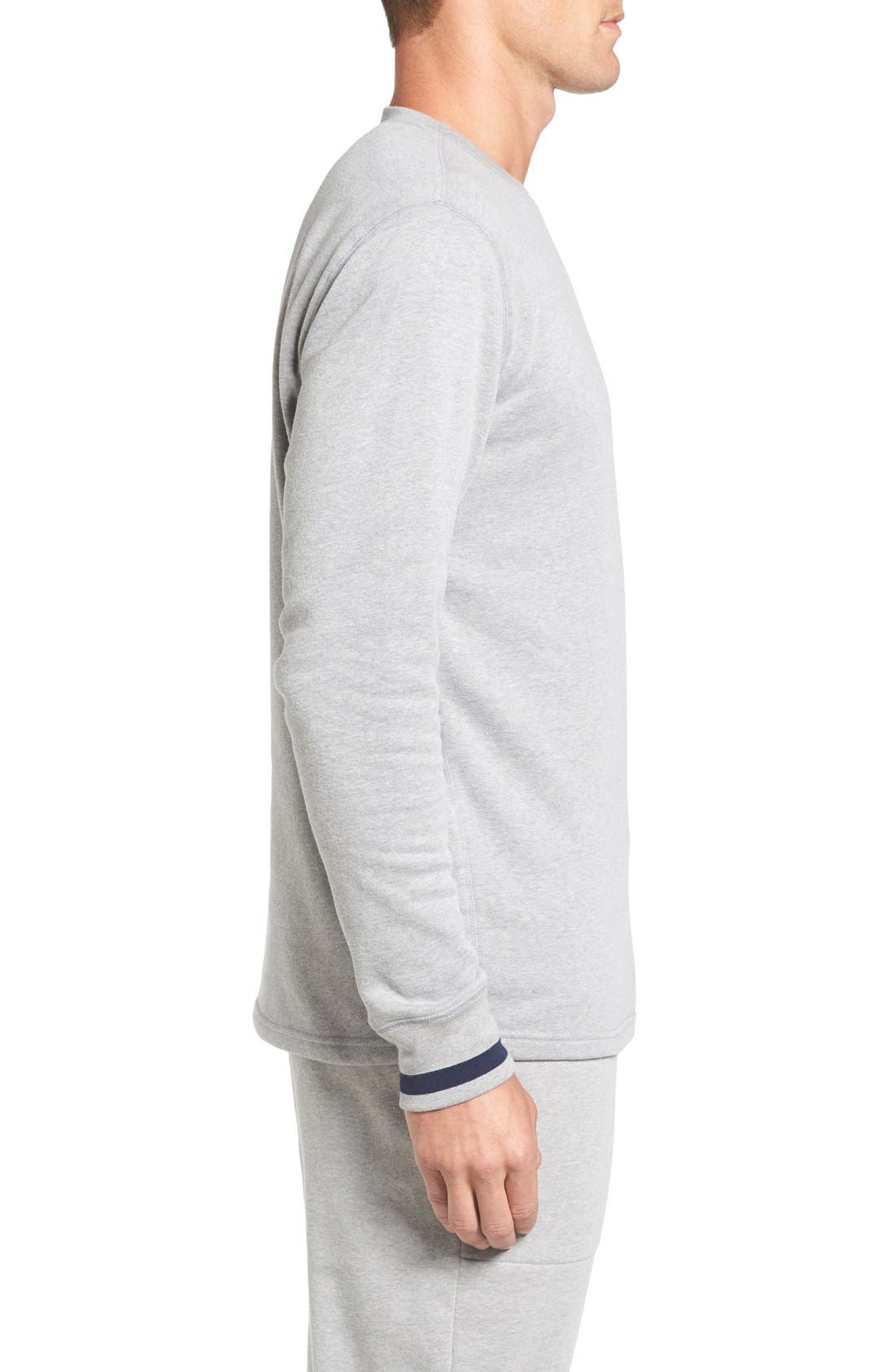 Brushed Jersey Cotton Blend Crewneck Sweatshirt,                             Alternate thumbnail 3, color,                             Andover Heather Grey