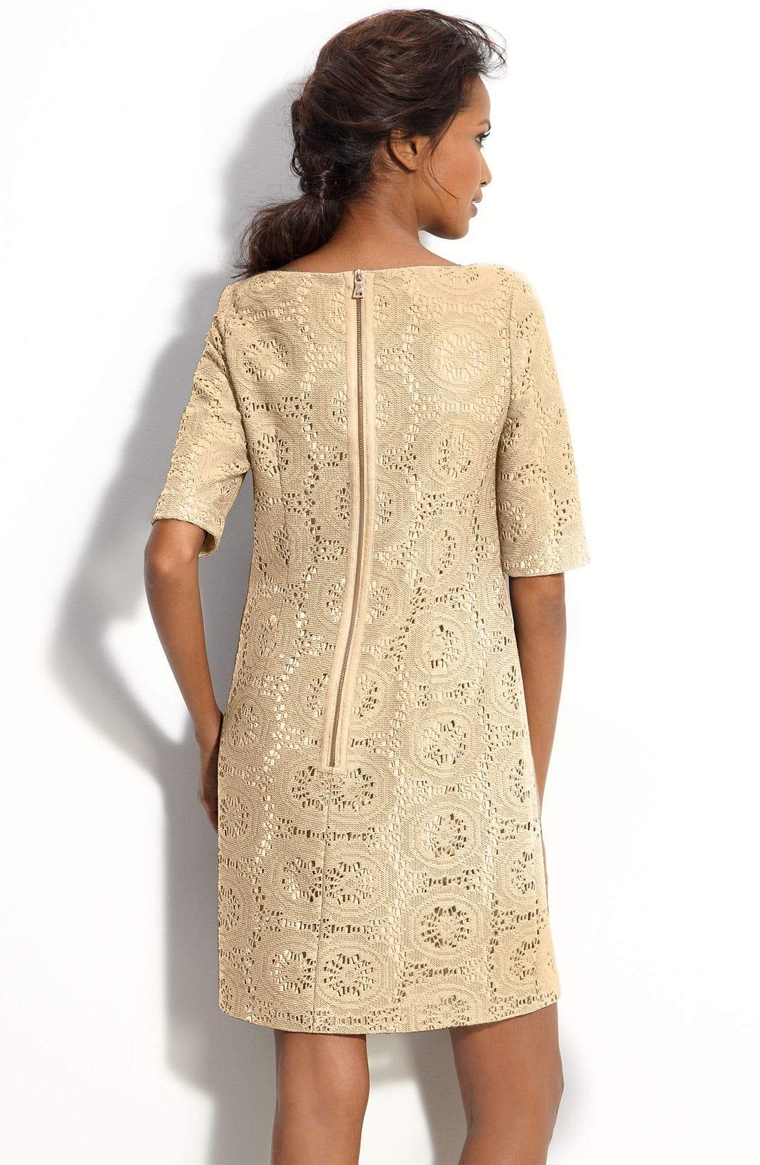 Alternate Image 2  - Adrianna Papell Lace Shift Dress (Petite)