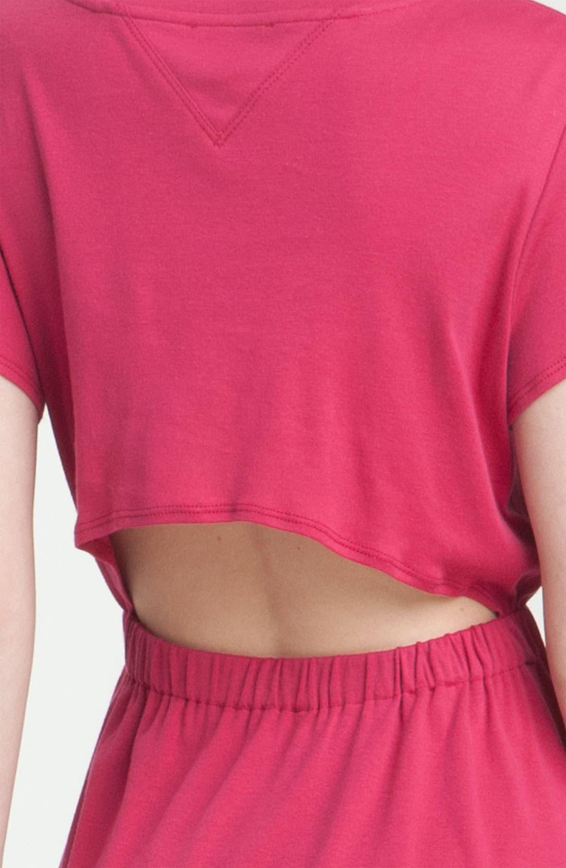 Alternate Image 3  - Theyskens' Theory 'Cashu Fiola' Dress
