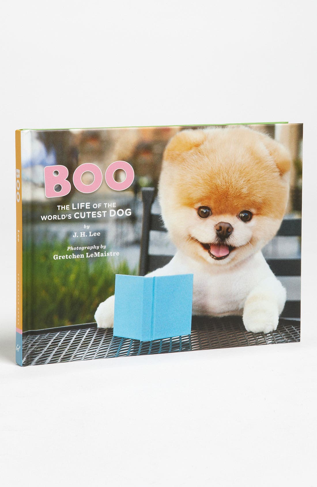 Alternate Image 1 Selected - 'Boo: The Life of the World's Cutest Dog' Book