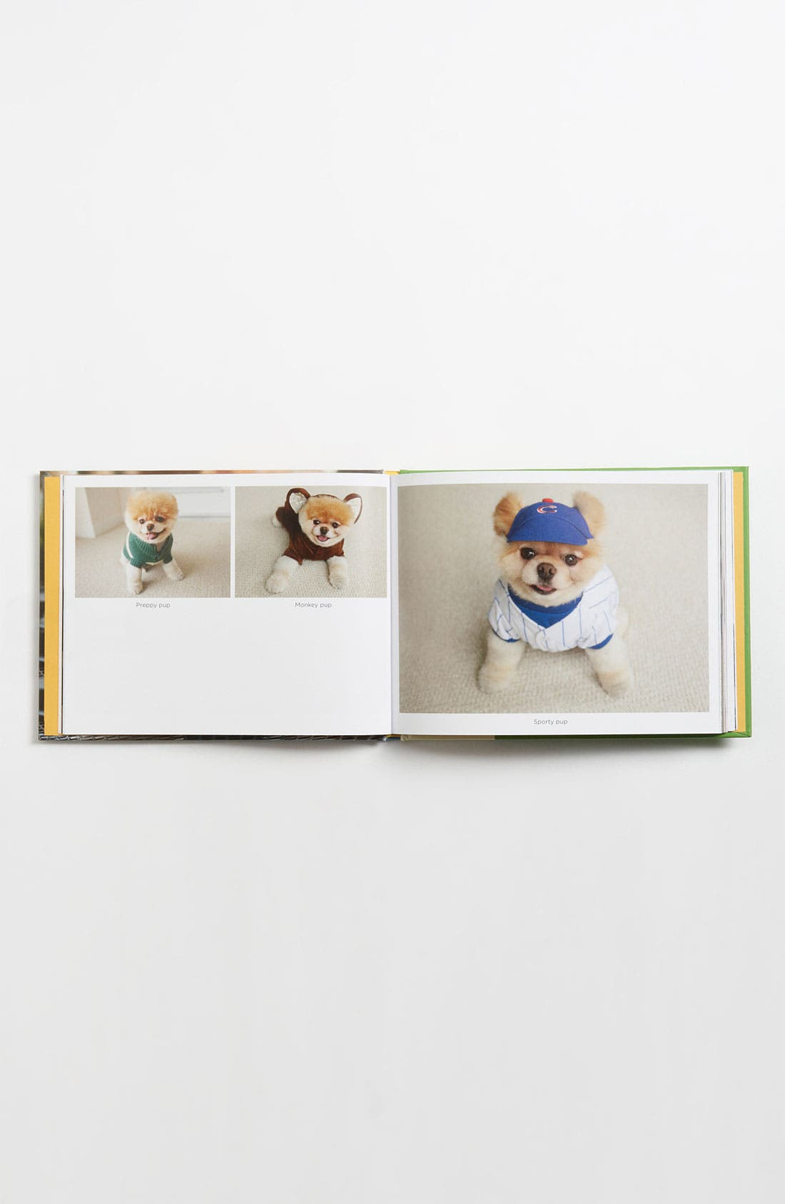 Alternate Image 2  - 'Boo: The Life of the World's Cutest Dog' Book