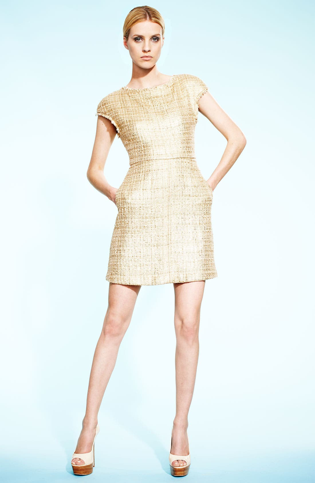Alternate Image 4  - Alice + Olivia Jacquard A-Line Dress