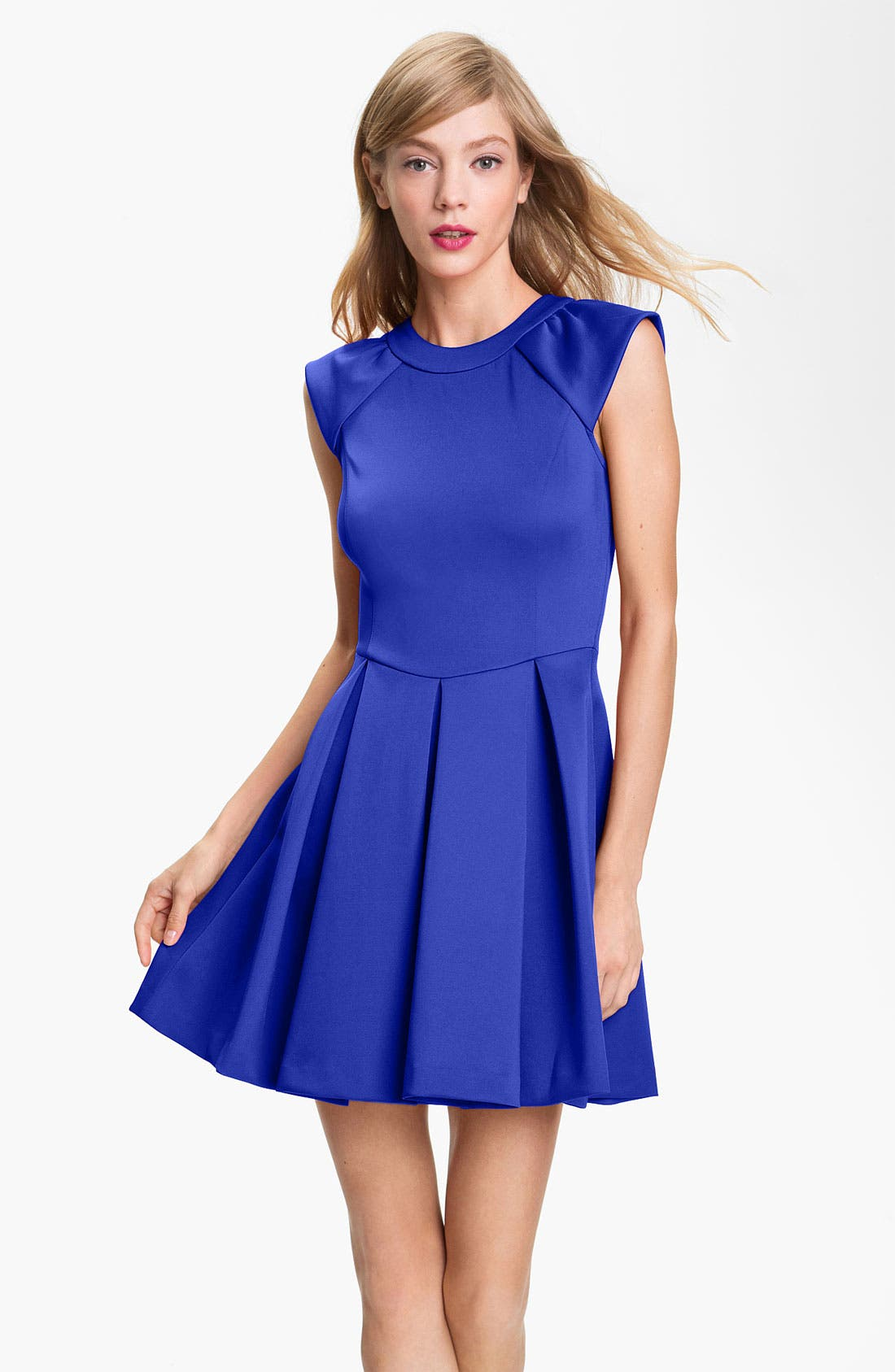 Alternate Image 1 Selected - Ted Baker London Pleated A-Line Dress