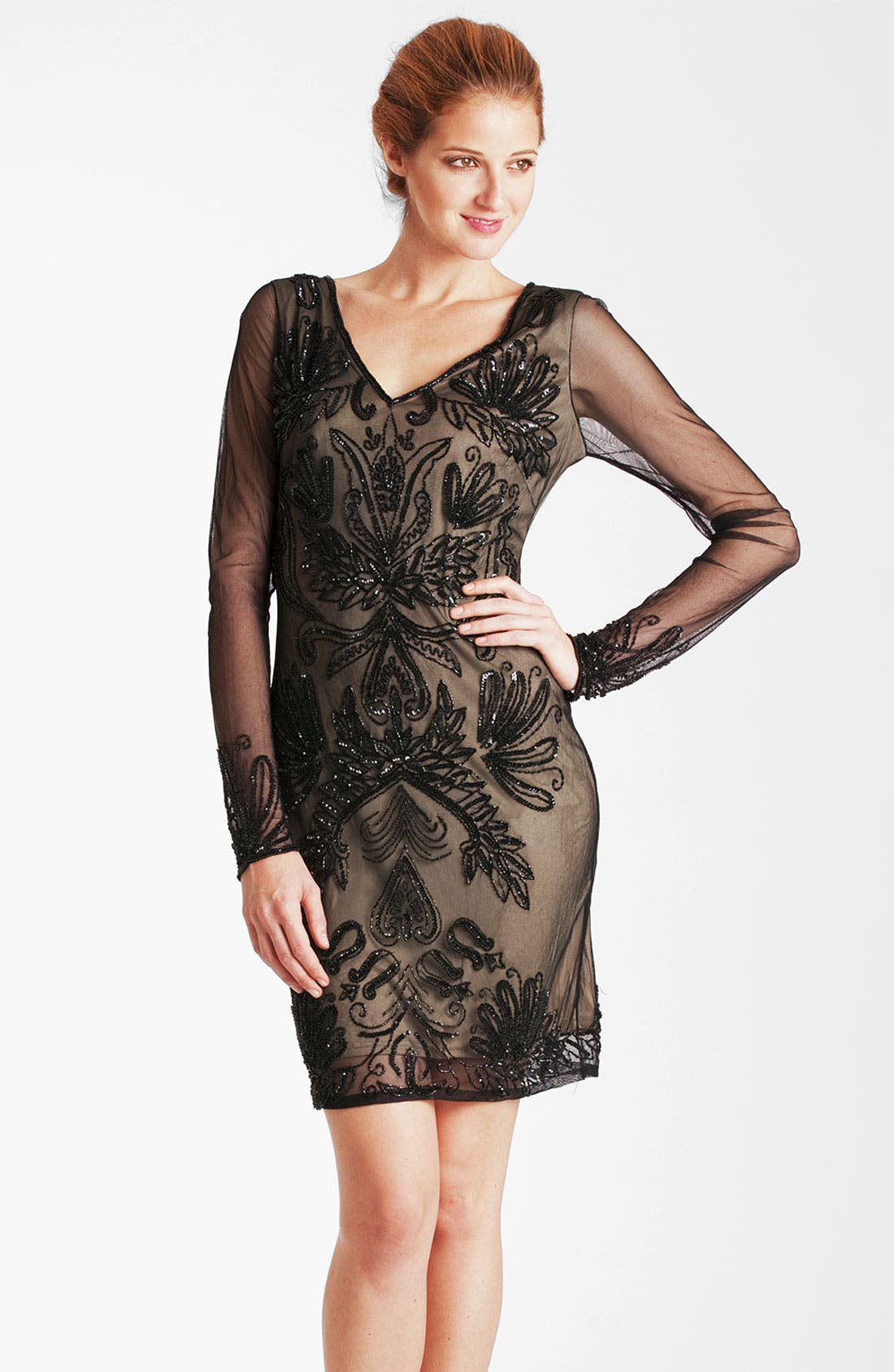 Main Image - JS Collections Embroidered Sheer Sleeve Mesh Dress