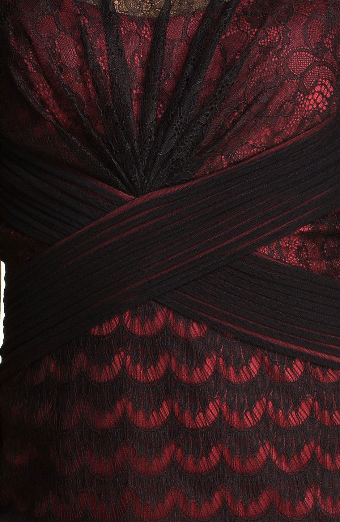 Alternate Image 3  - Tadashi Shoji Illusion Yoke Scalloped Lace Overlay Dress