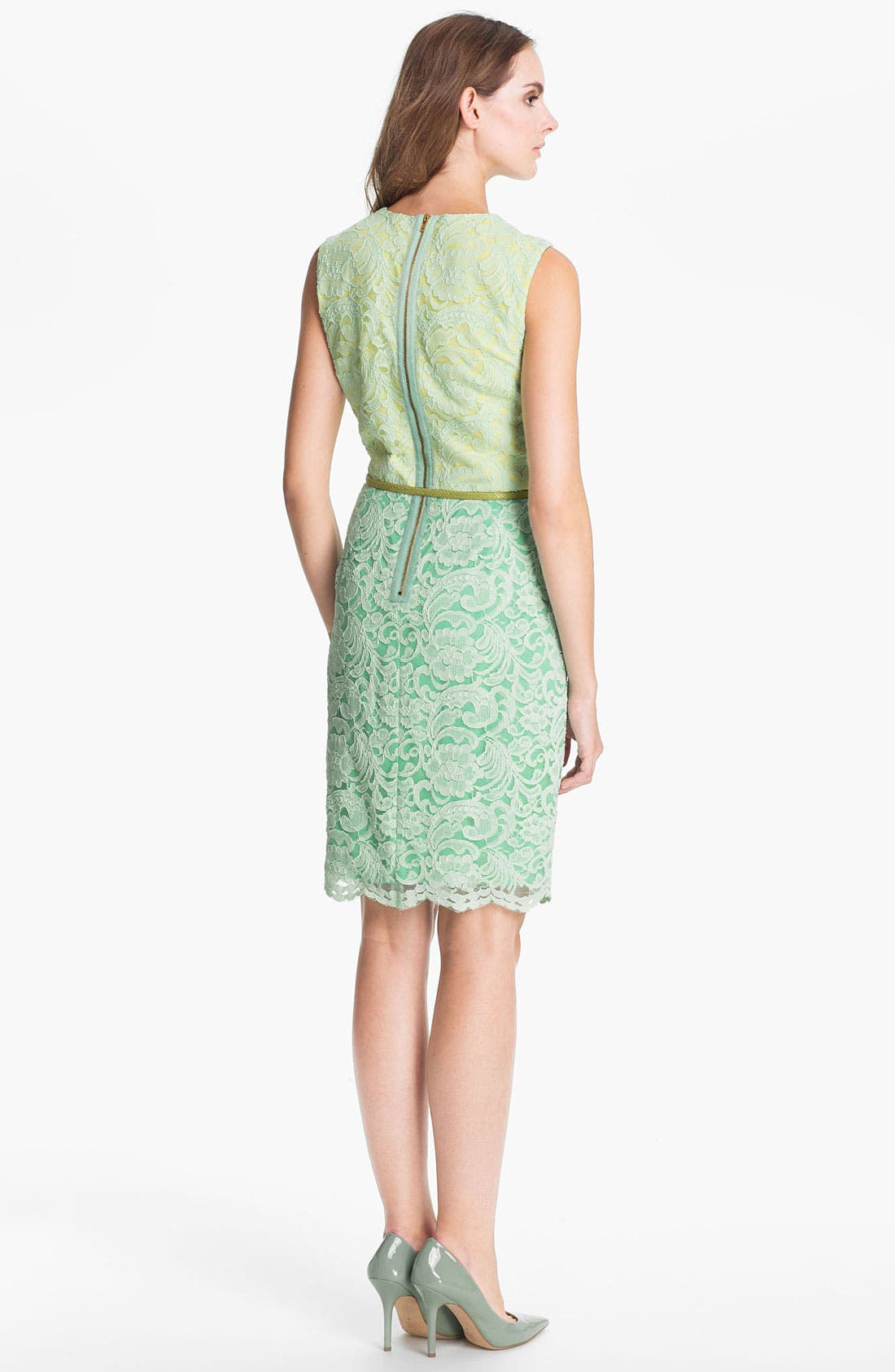 Alternate Image 2  - Maggy London Belted Lace Sheath Dress