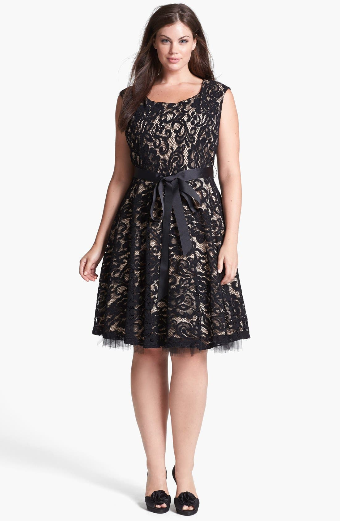 Alternate Image 3  - Betsy & Adam Lace Fit & Flare Dress (Plus Size)