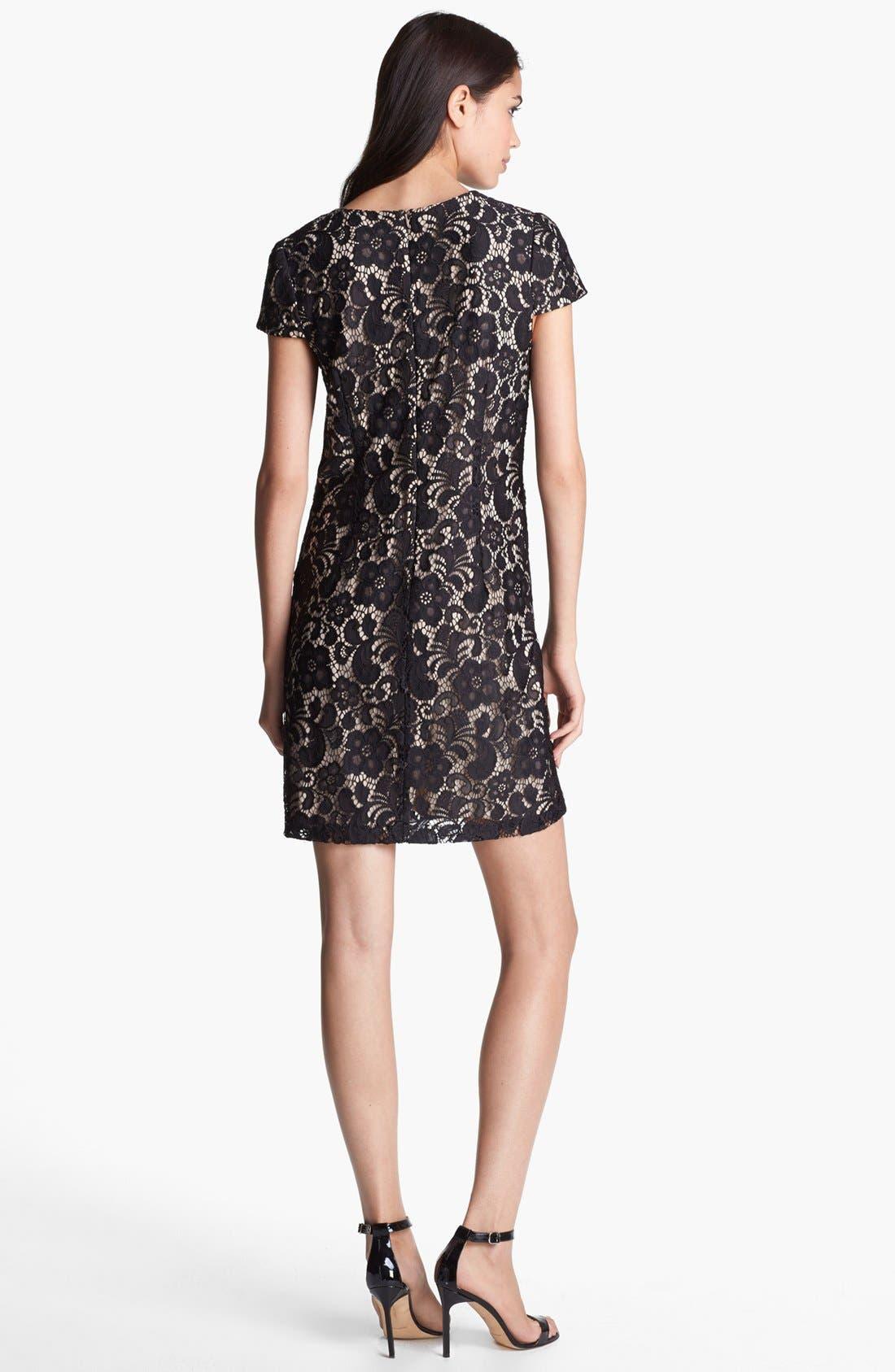Alternate Image 3  - Ivy & Blu Lace Shift Dress