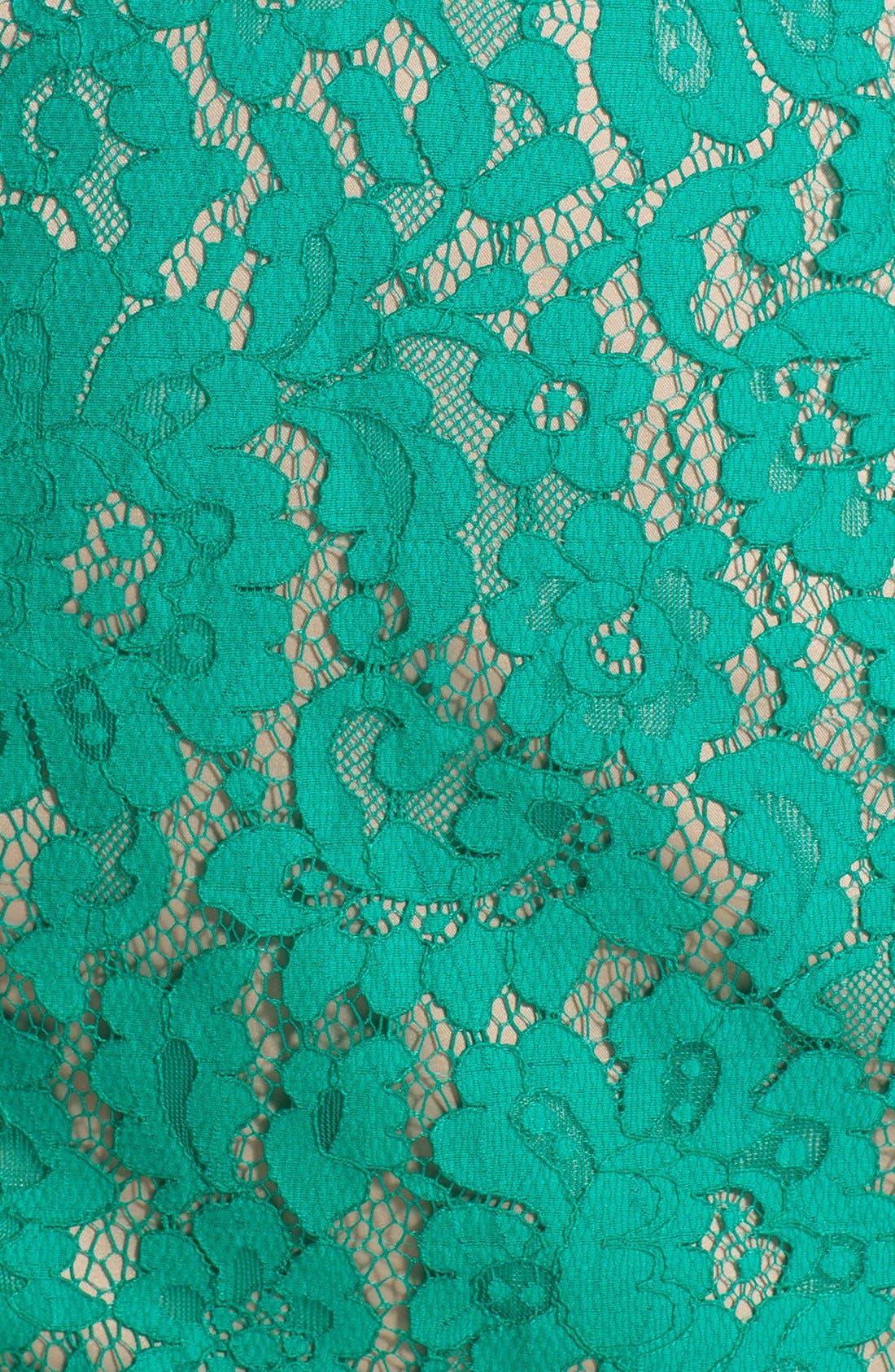 Alternate Image 4  - Eliza J Sleeveless Lace Dress