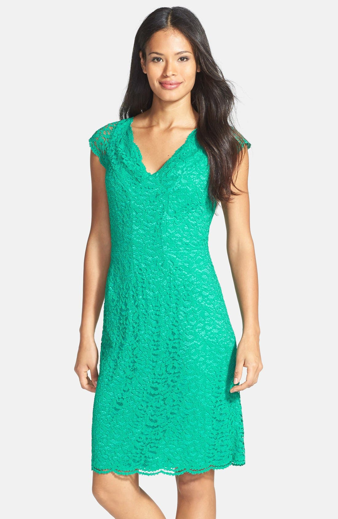 Alternate Image 1 Selected - Donna Ricco Stretch Lace Dress (Regular & Petite)