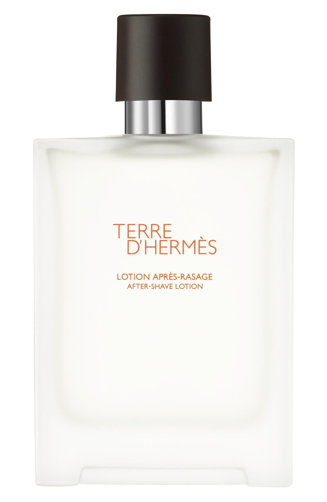 Hermès Terre d'Hermès - After-shave lotion