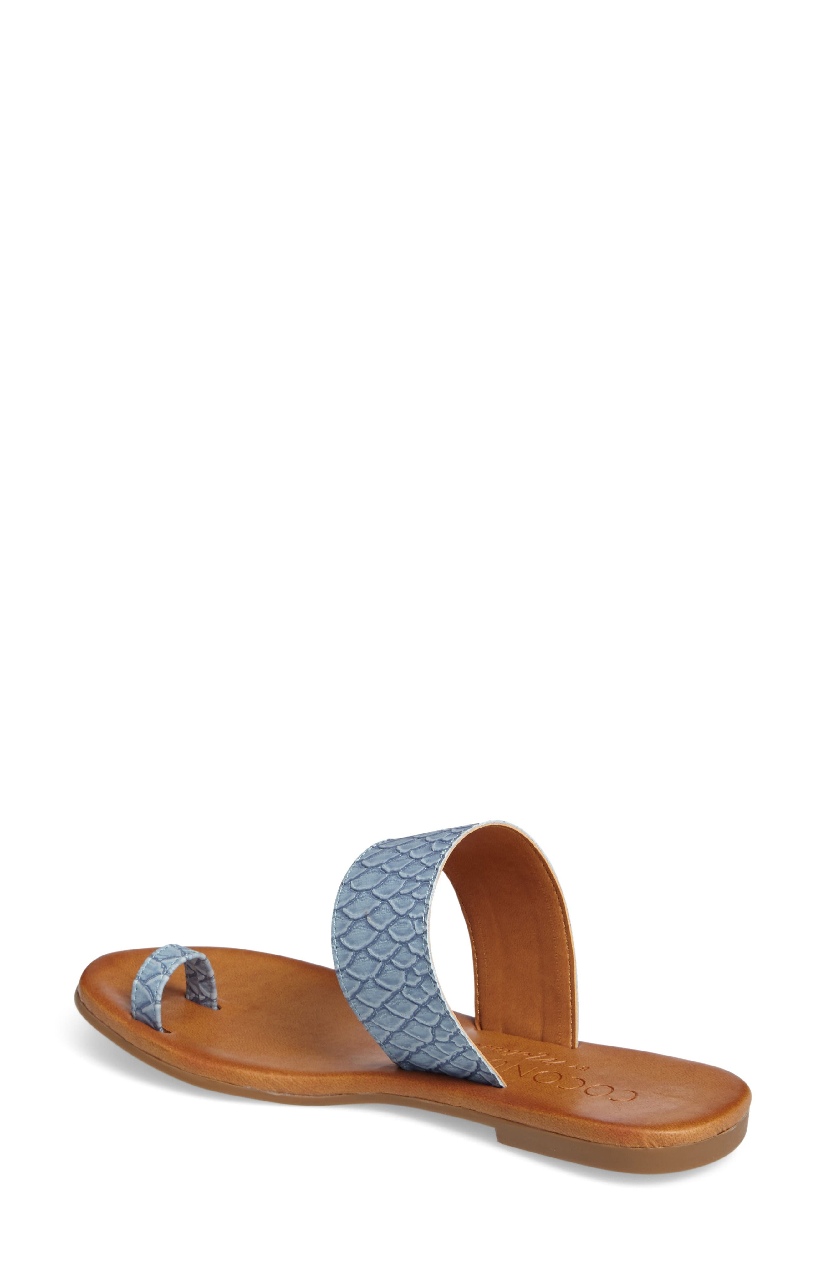Coconuts by Matisse Freddie Slide Sandal,                             Alternate thumbnail 2, color,                             Dusty Blue Leather