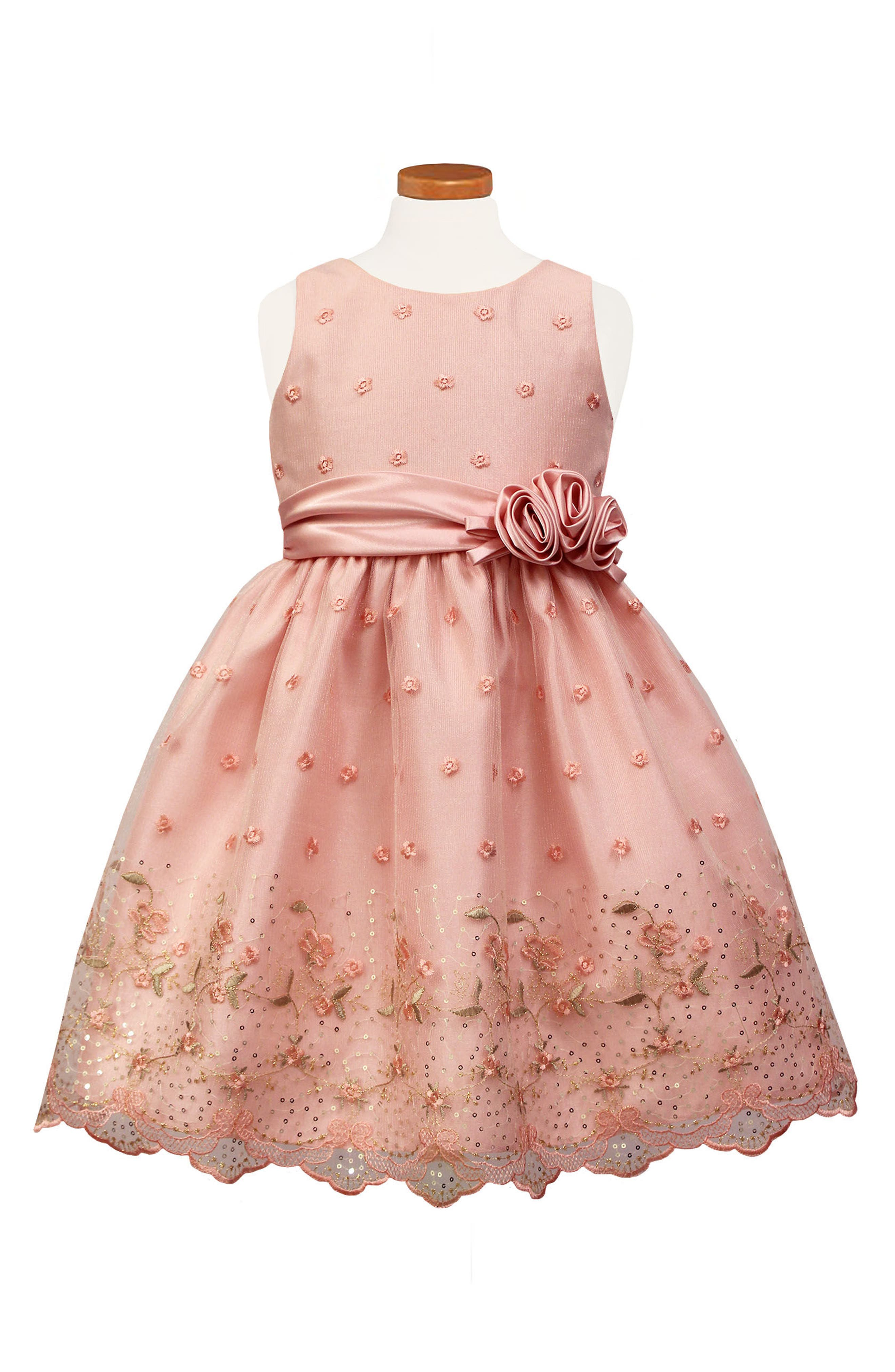 Flower Embroidered Party Dress,                         Main,                         color, Blush