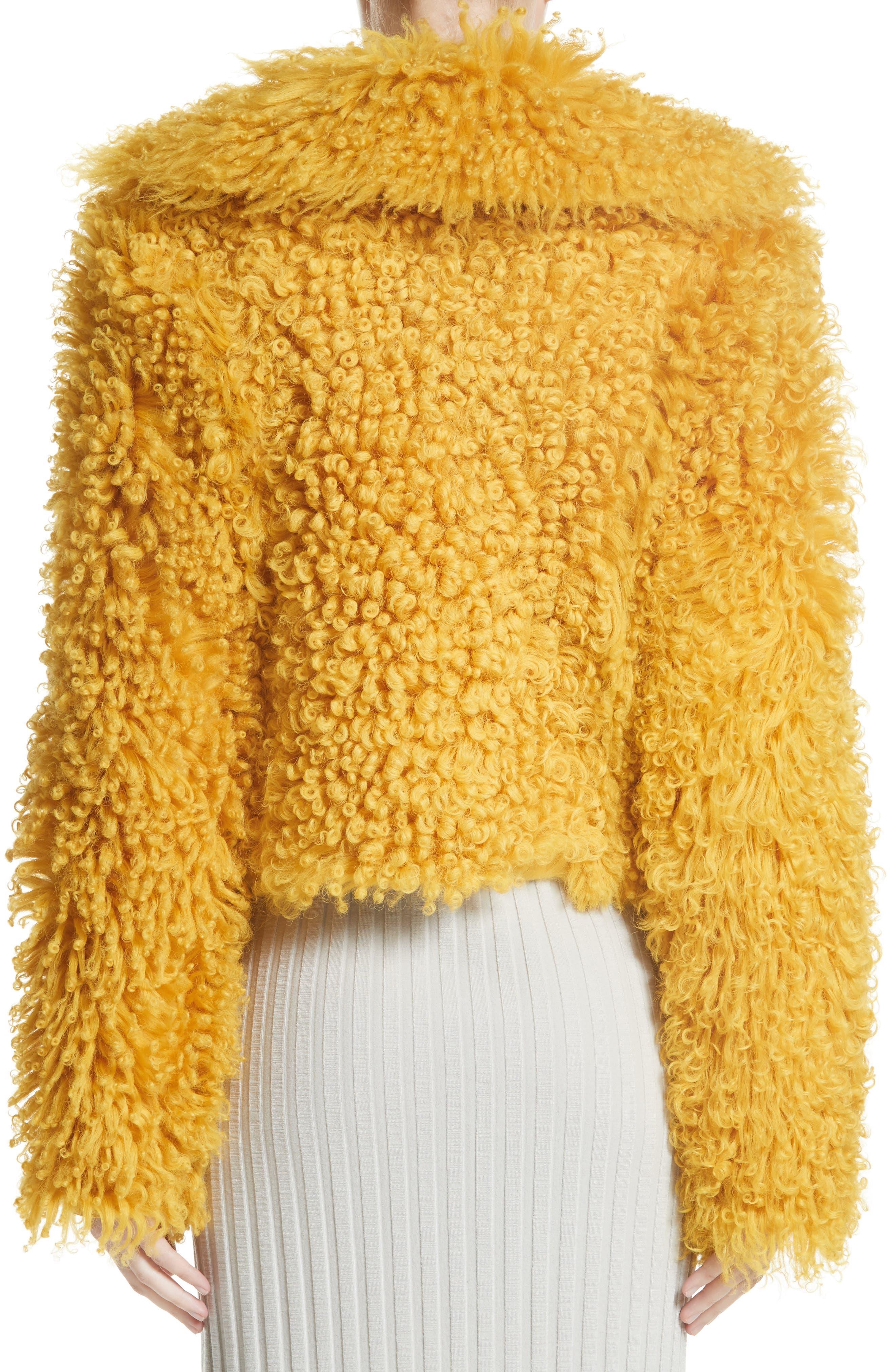Genuine Shearling Moto Jacket,                             Alternate thumbnail 2, color,                             Mustard