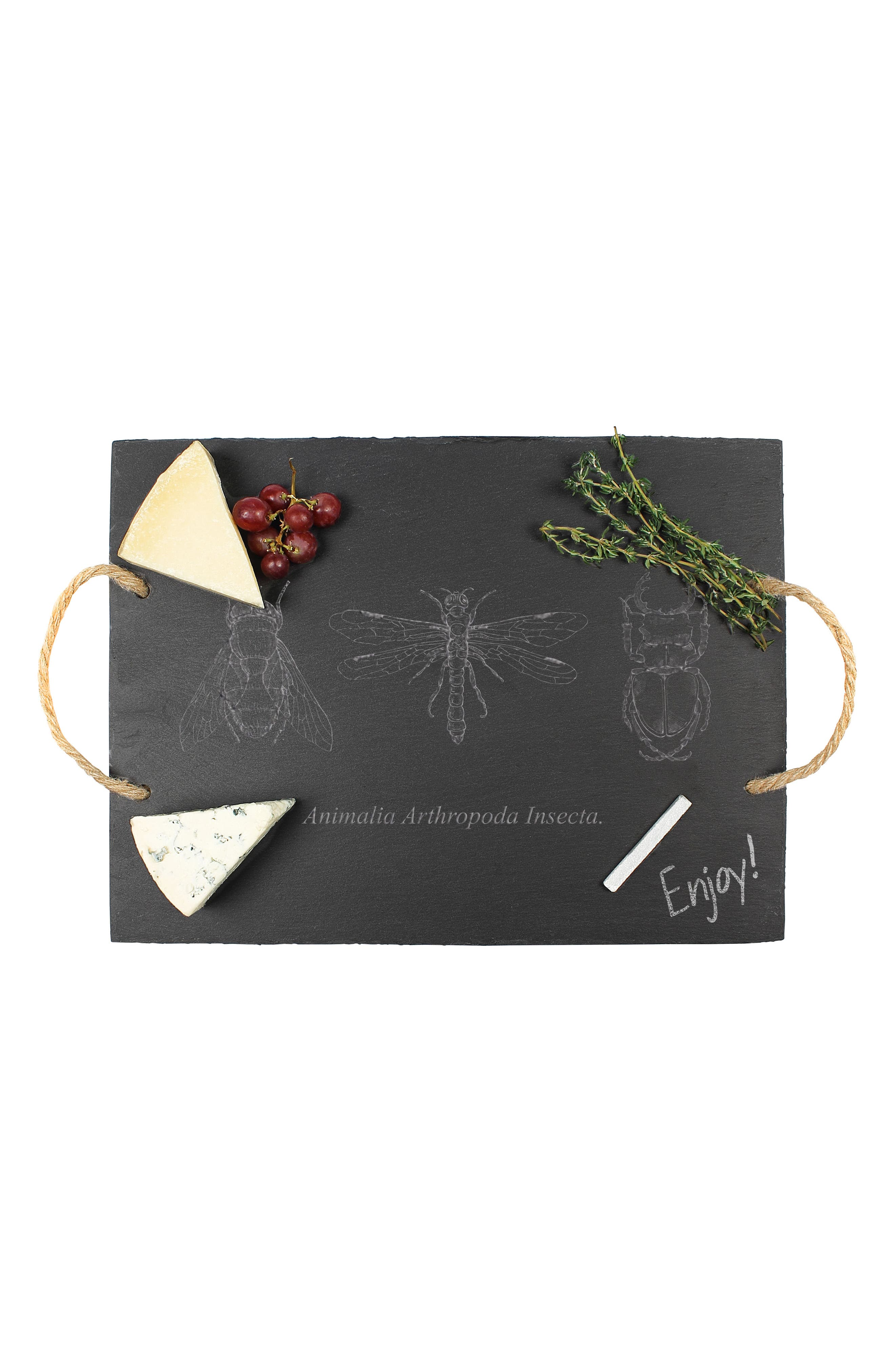 Insect Slate Tray,                             Alternate thumbnail 2, color,                             Black