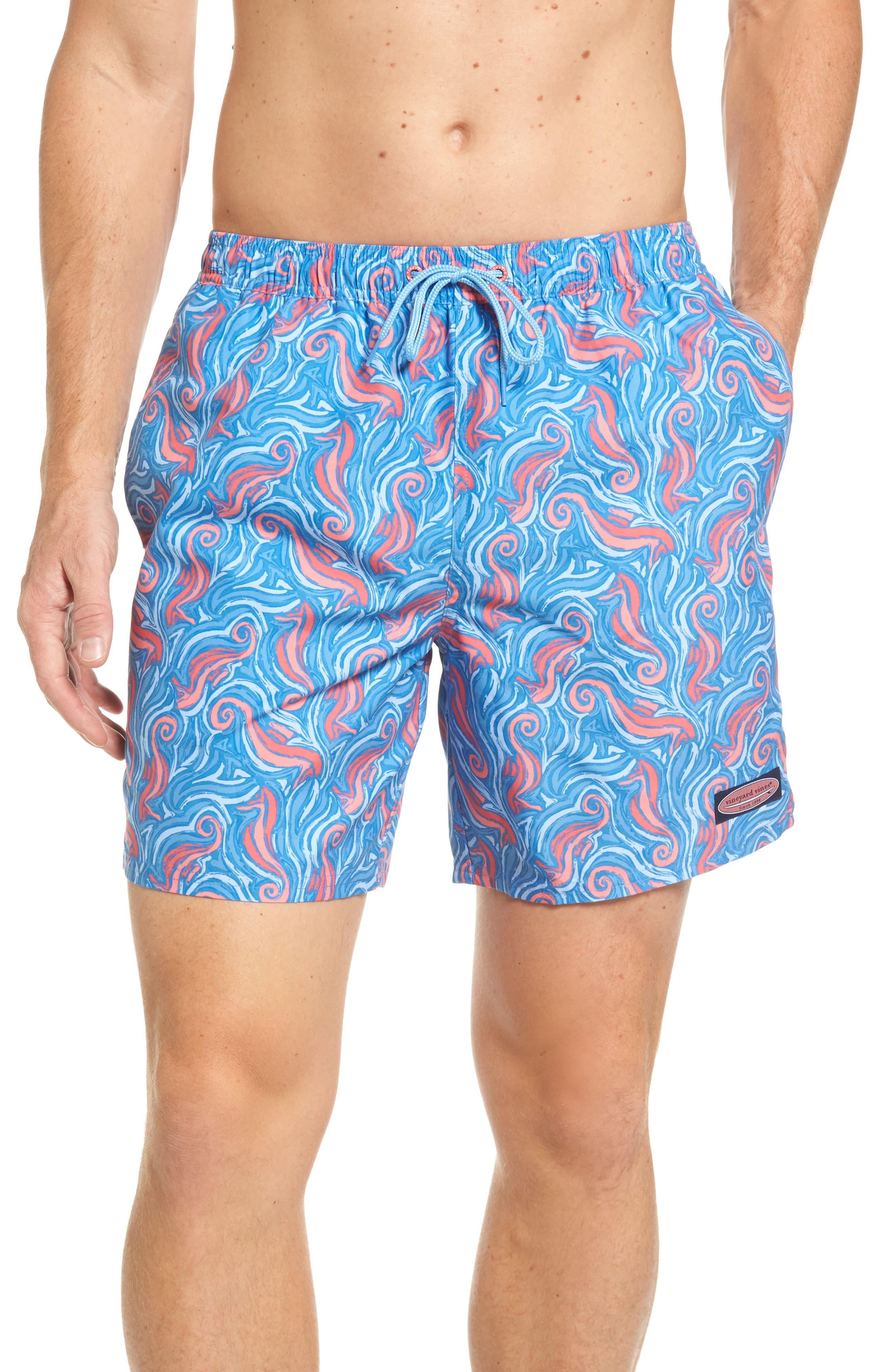 Seahorse Chappy Swim Trunks,                         Main,                         color, Hull Blue