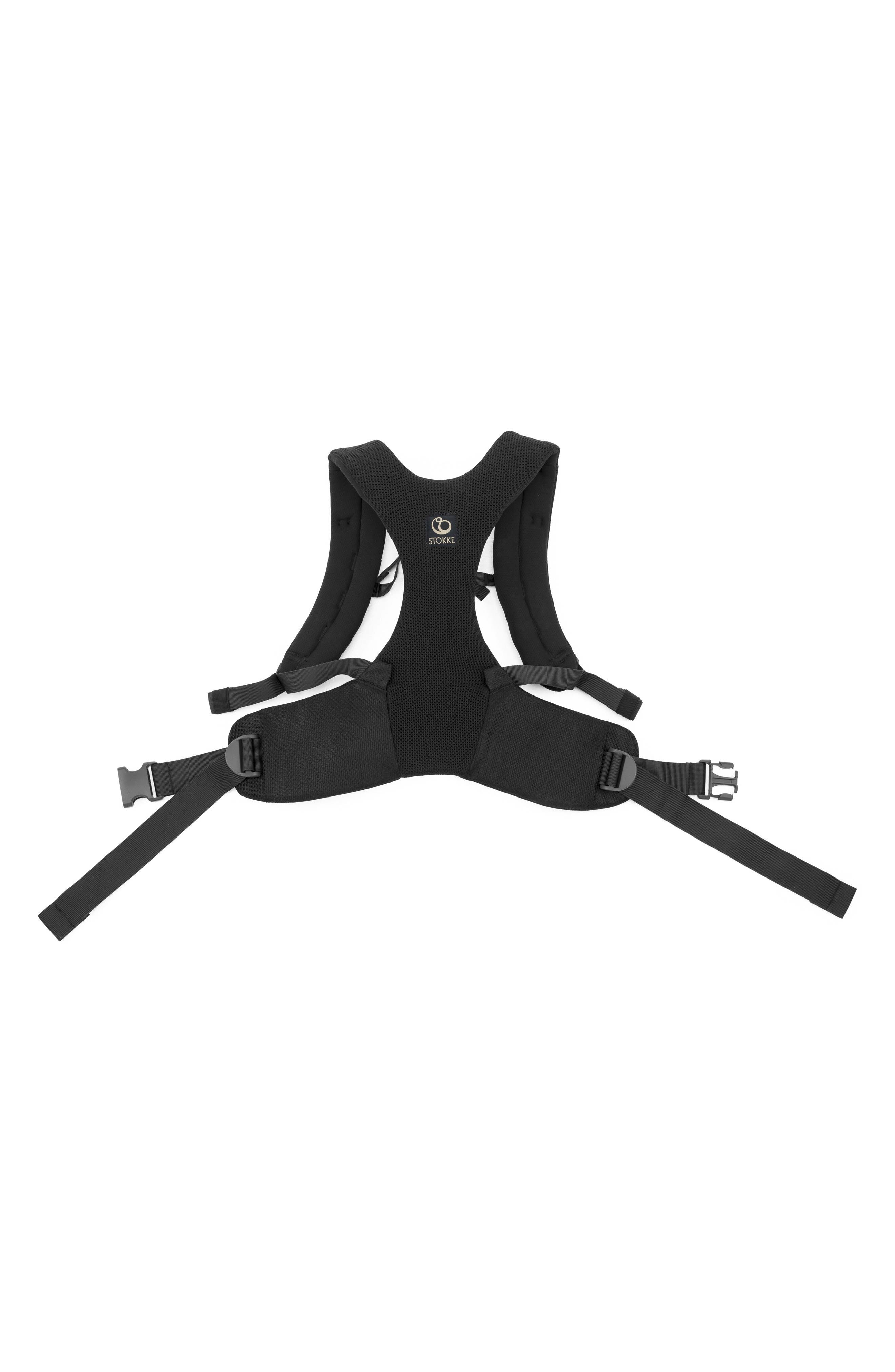 MyCarrier<sup>™</sup> Front Baby Carrier,                             Alternate thumbnail 2, color,                             Black Mesh