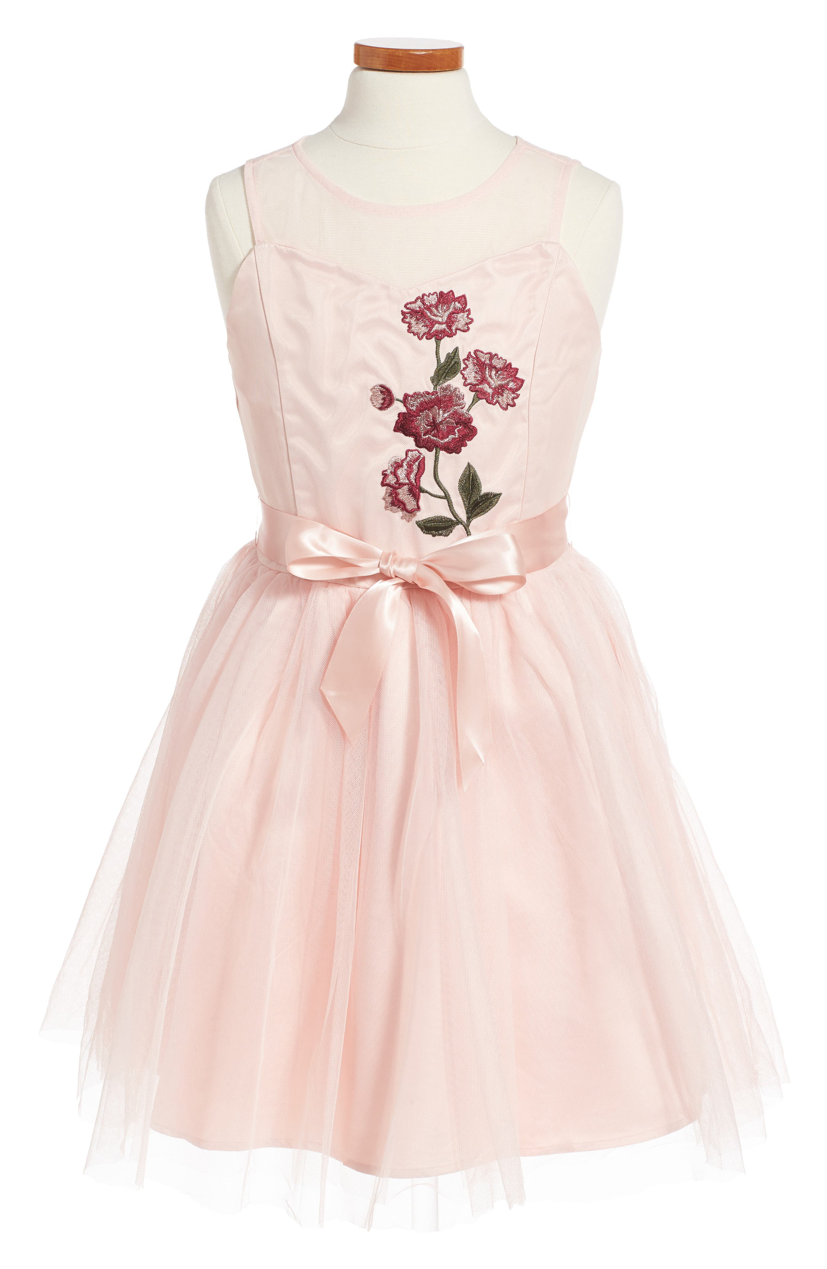 Embroidered Mesh Fit & Flare Dress,                         Main,                         color, Blush