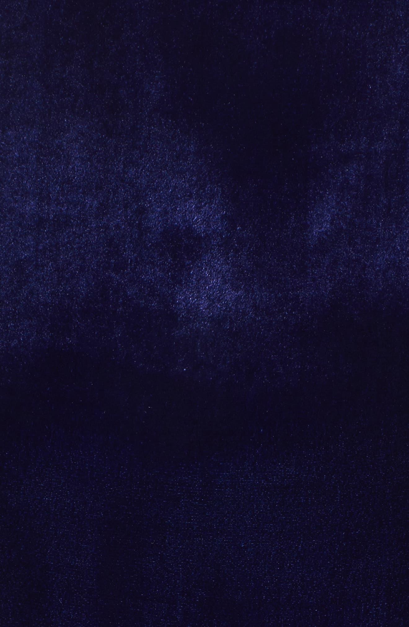 Alternate Image 5  - Eileen Fisher Velvet Top (Plus Size)