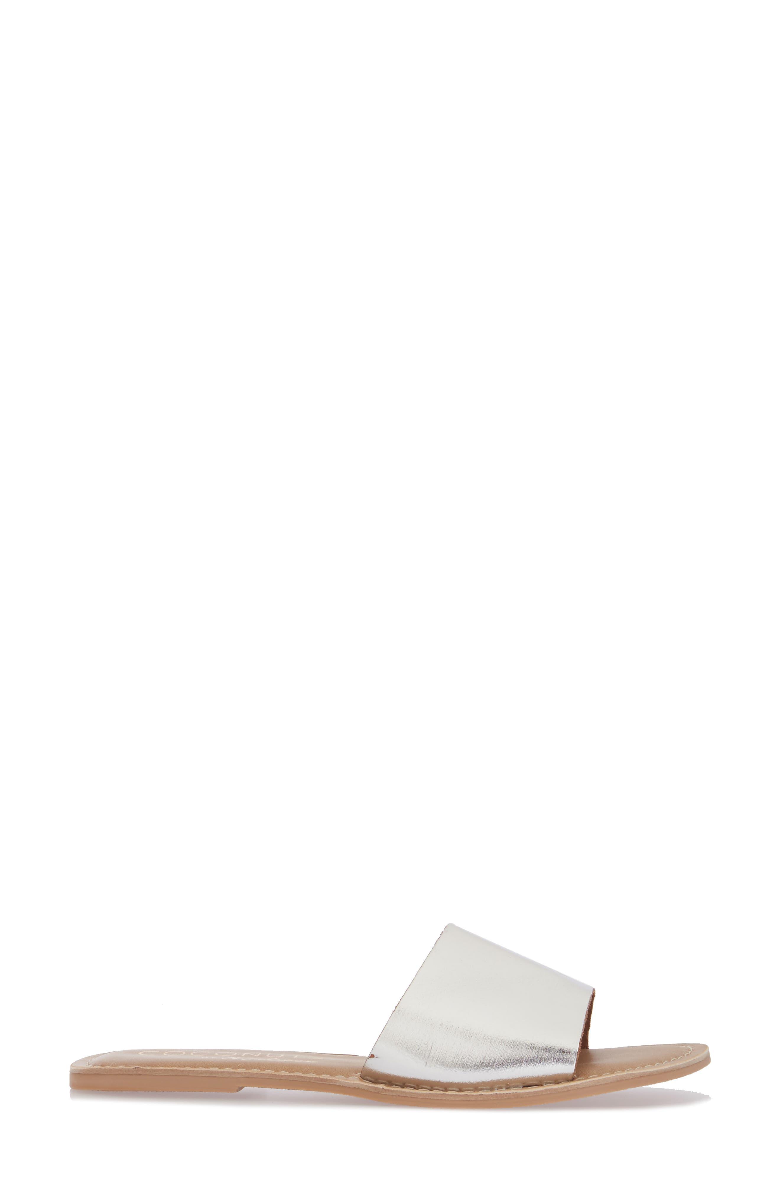 Cabana Slide Sandal,                             Alternate thumbnail 3, color,                             Silver Leather