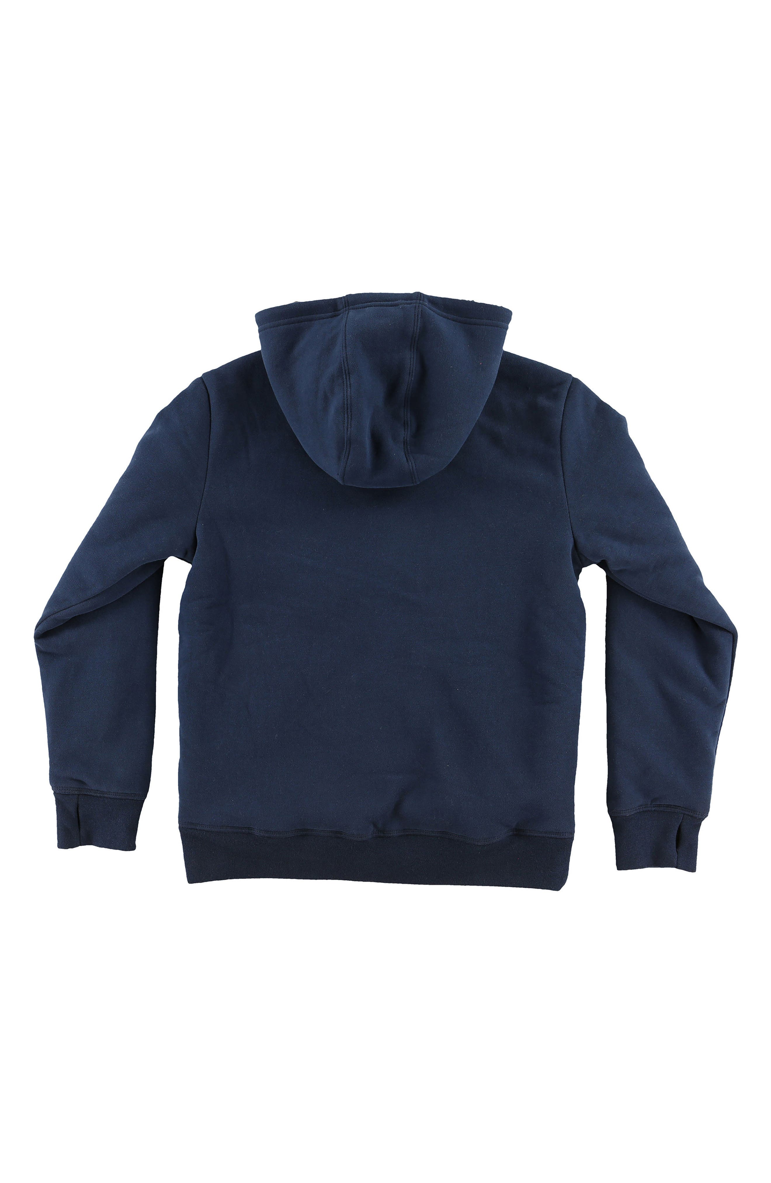 Staple Plush Lined Pullover Hoodie,                             Alternate thumbnail 2, color,                             Navy
