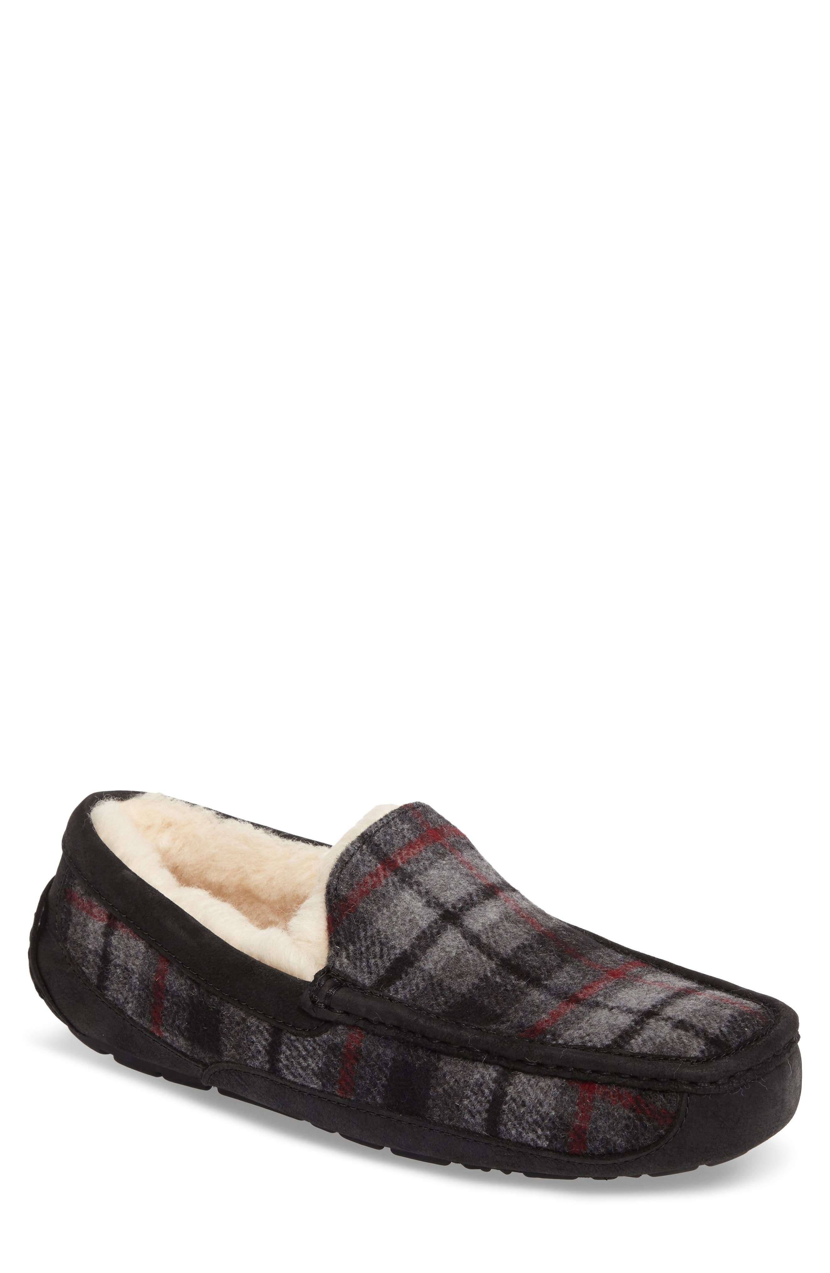 UGG® Ascot Slipper (Men)