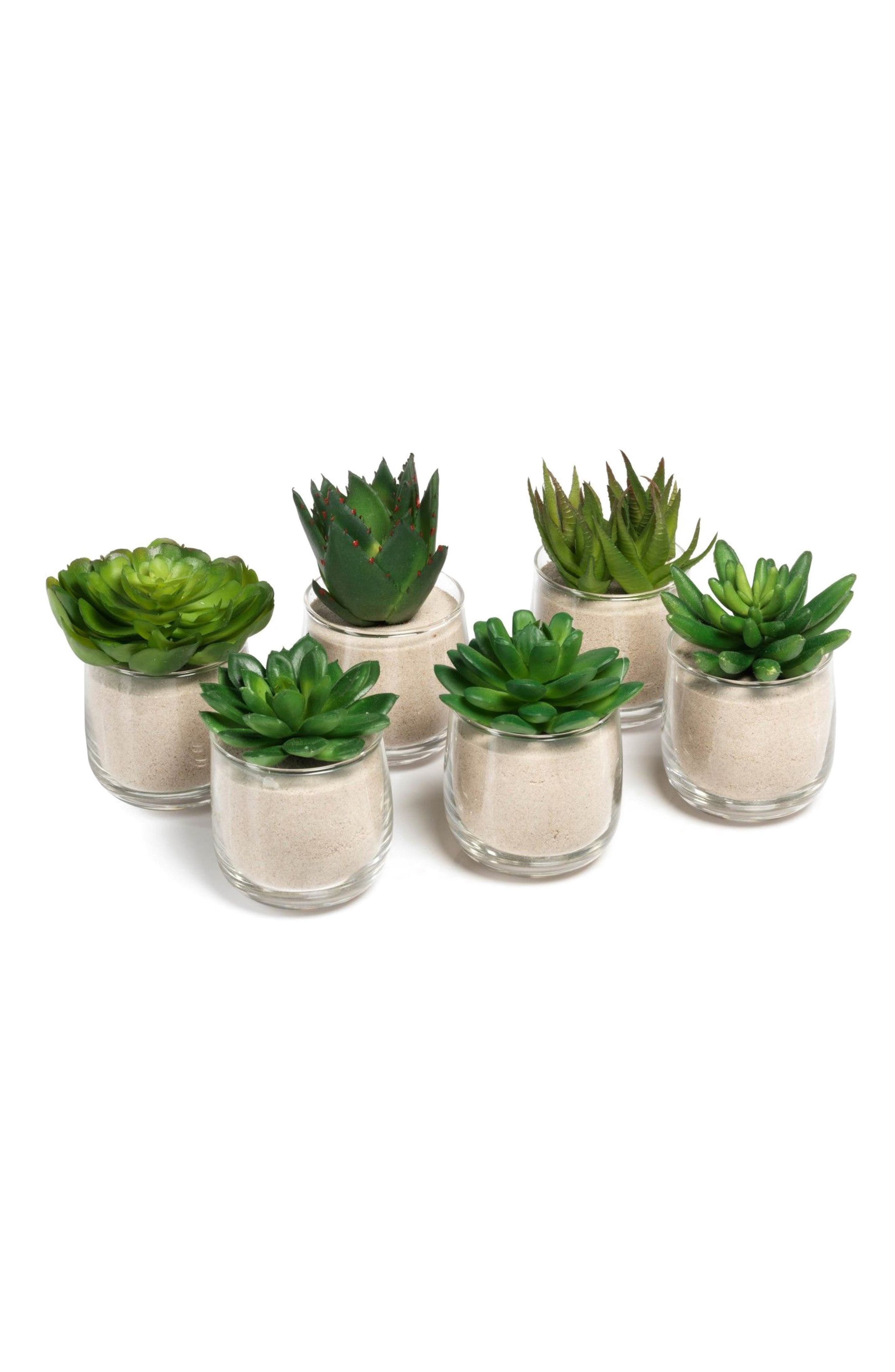 Set of 6 Faux Succulent Decorations,                         Main,                         color, Clear