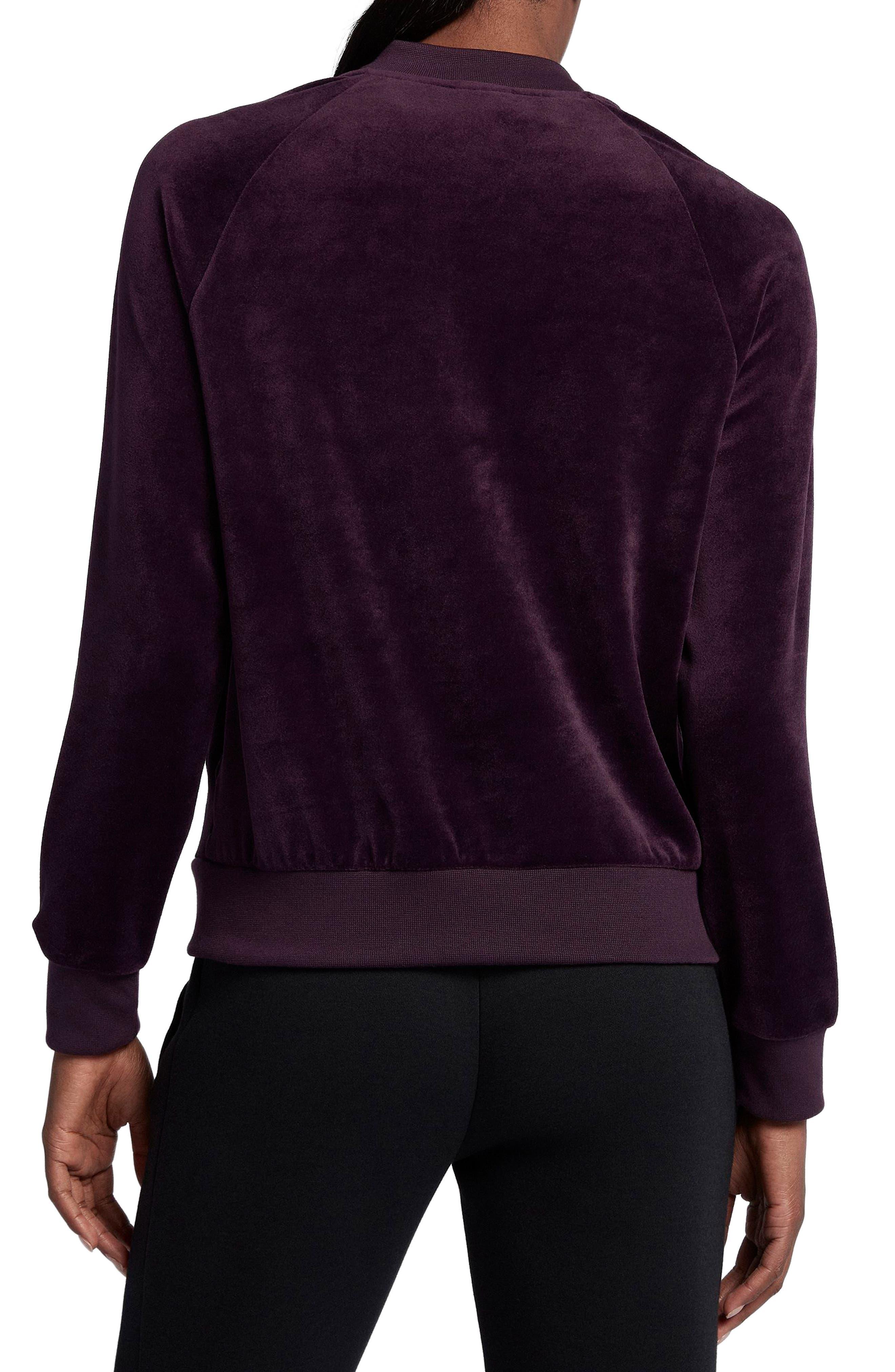 Alternate Image 2  - Nike Velour Jacket