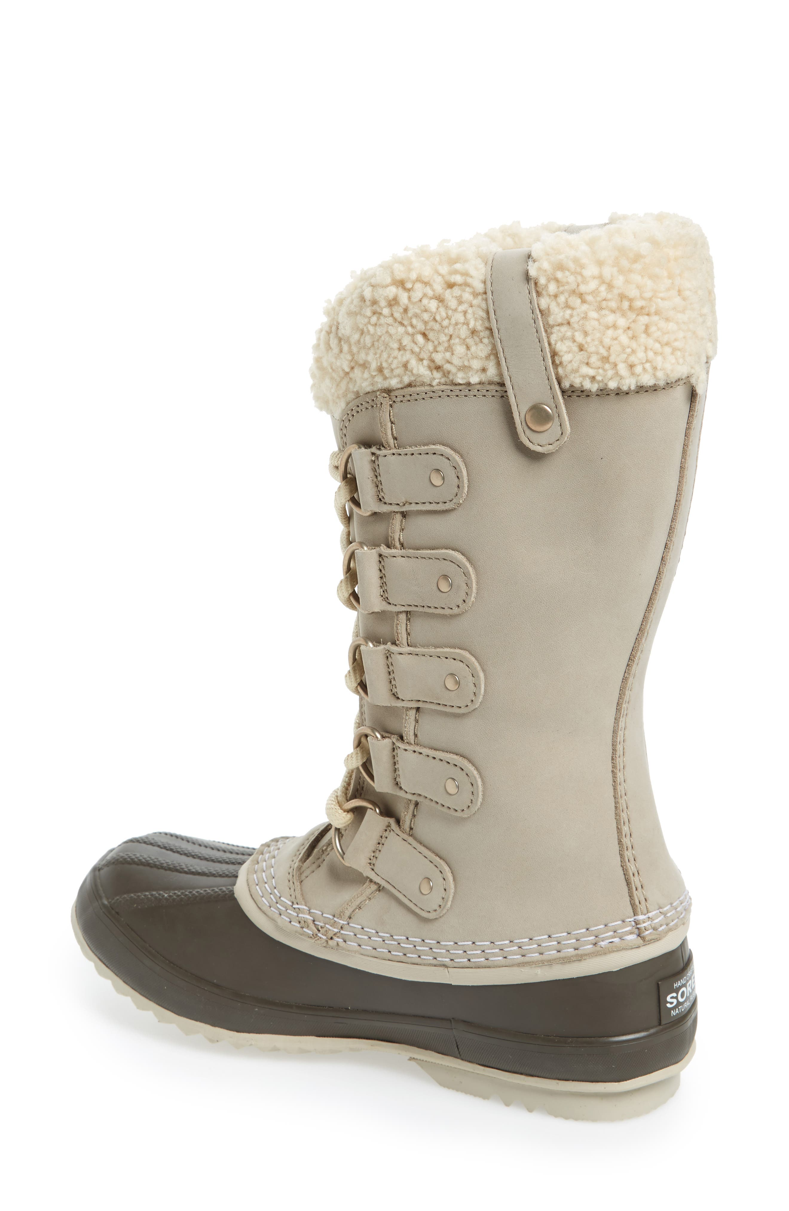 Joan of Arctic<sup>™</sup> Lux Waterproof Winter Boot with Genuine  Shearling Cuff,                             Alternate thumbnail 2, color,                             Ancient Fossil/ Mud