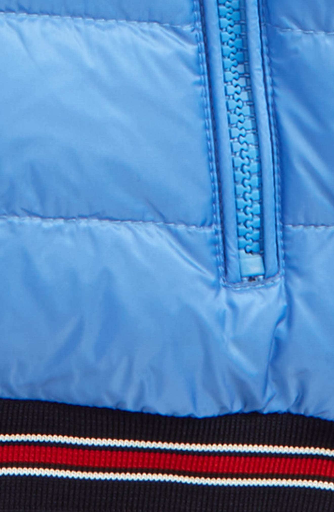 Eliot Hooded Goose Down Jacket,                             Alternate thumbnail 2, color,                             Pastel Blue