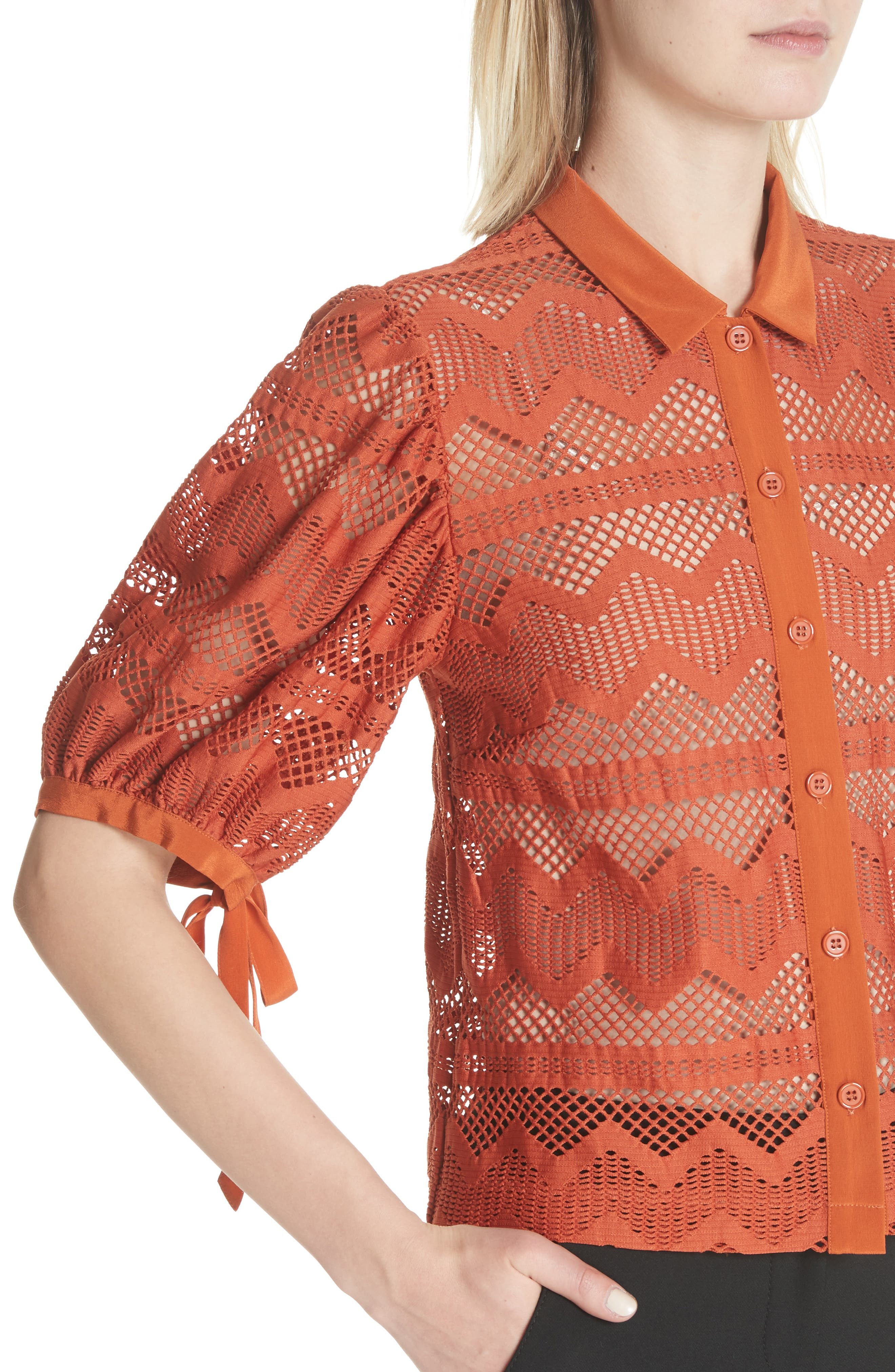 Puff Sleeve Lace Blouse,                             Alternate thumbnail 4, color,                             Brick