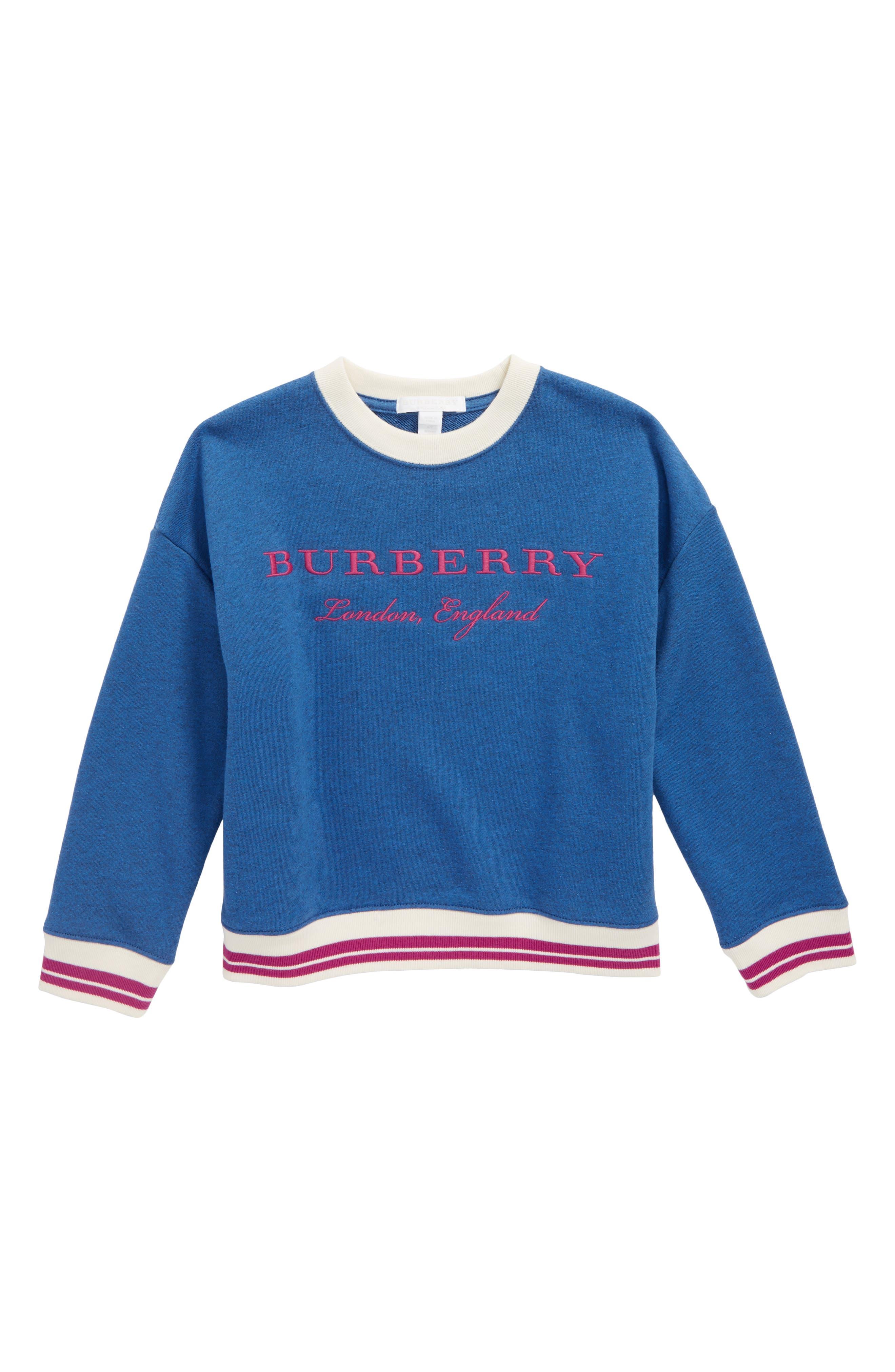 Eli Stripe Jersey Sweatshirt,                             Main thumbnail 1, color,                             Hydrangea Blue