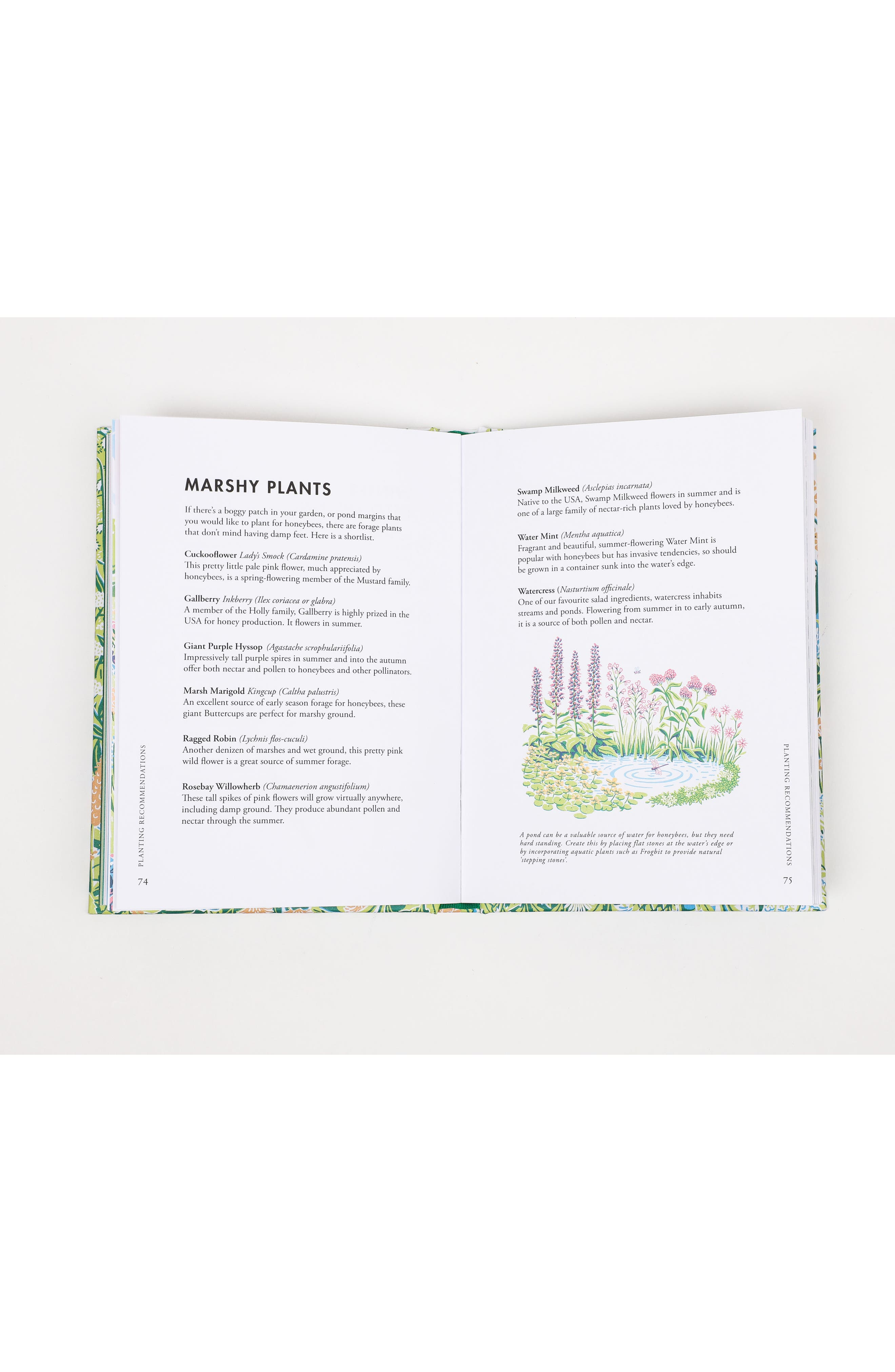 Planting For Honeybees Book,                             Alternate thumbnail 3, color,                             Blue/ Green Multi